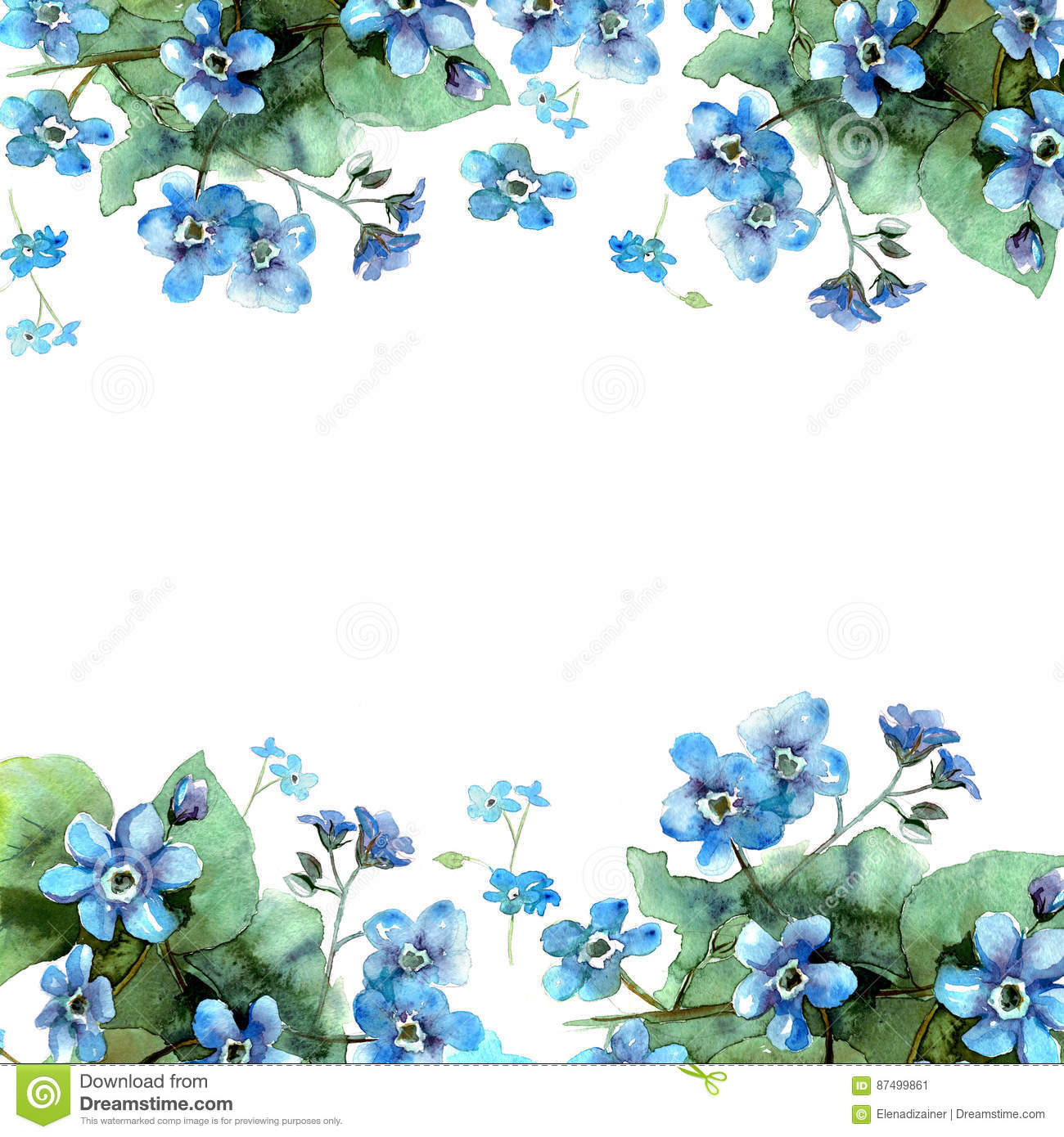 Download Cute Watercolor Flower Border Background With Blue Forget Me Nots Stock Illustration