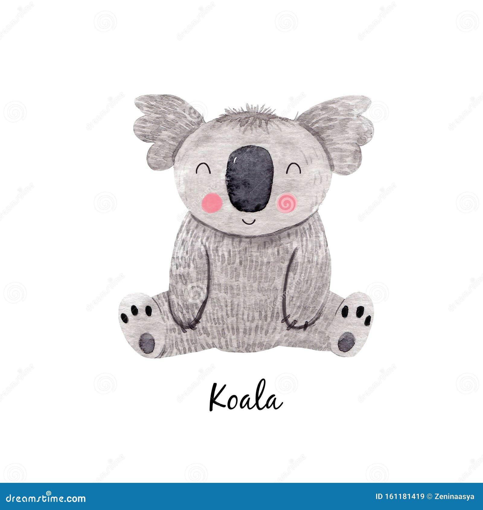Cute Watercolor Australian Baby Koala Bear Illustration For