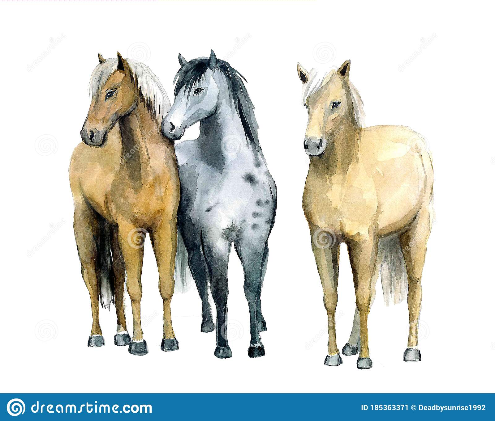Beautiful Watercolor Horses On The White Background Animal Watercolor Silhouette Sketch Hand Draw Art Illustration Stock Illustration Illustration Of Brown Design 185363371