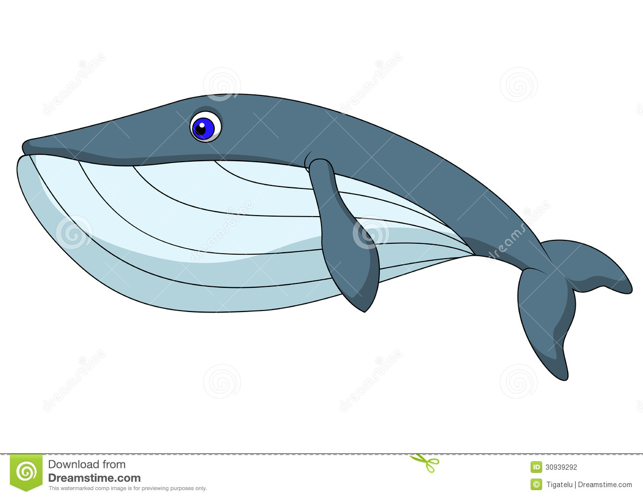 Cute whale in water cartoon isolated illustration stock photography - Cute Whale Cartoon Stock Photography