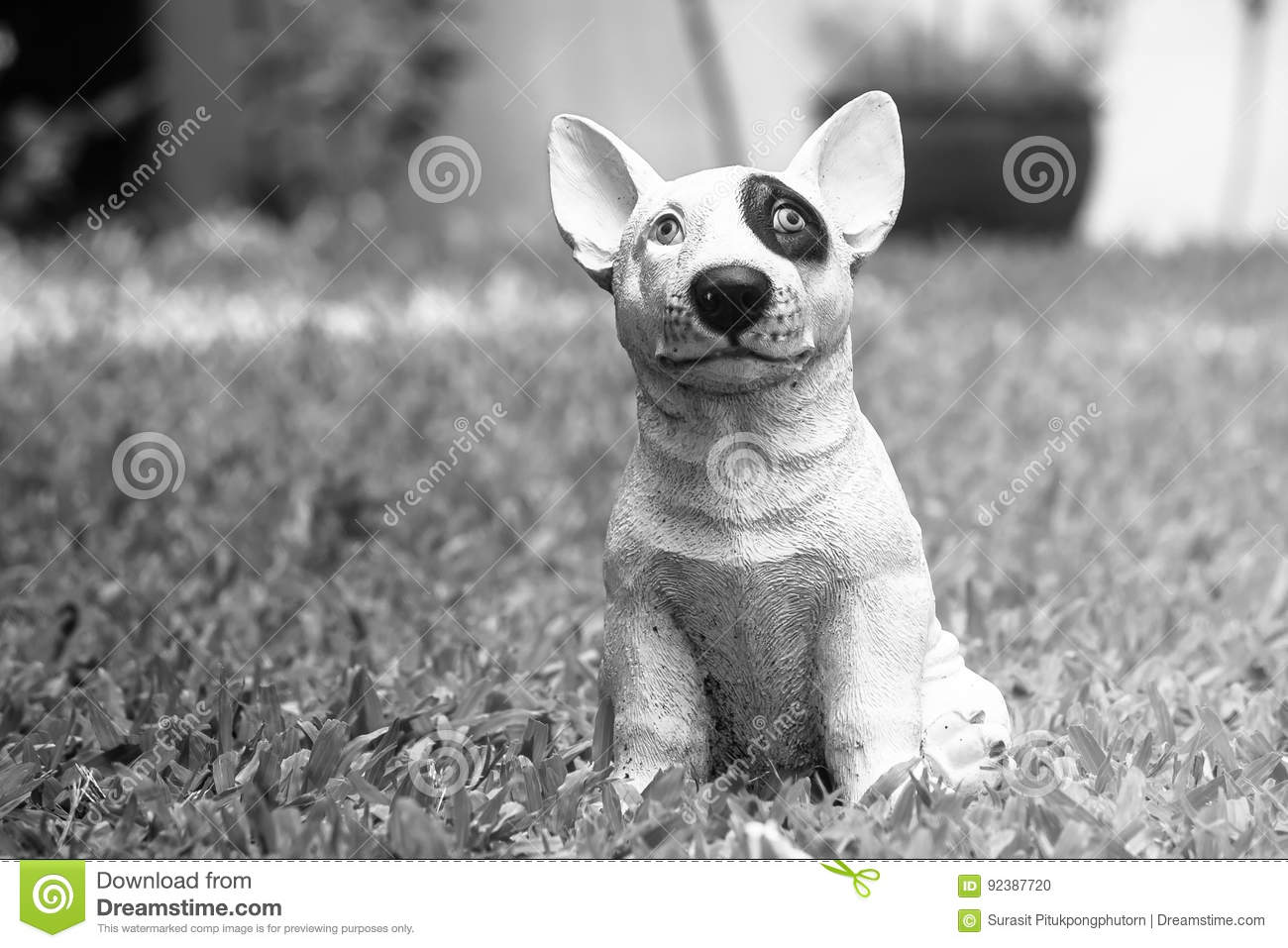 Cute white dog standing on green grass in garden for decoration