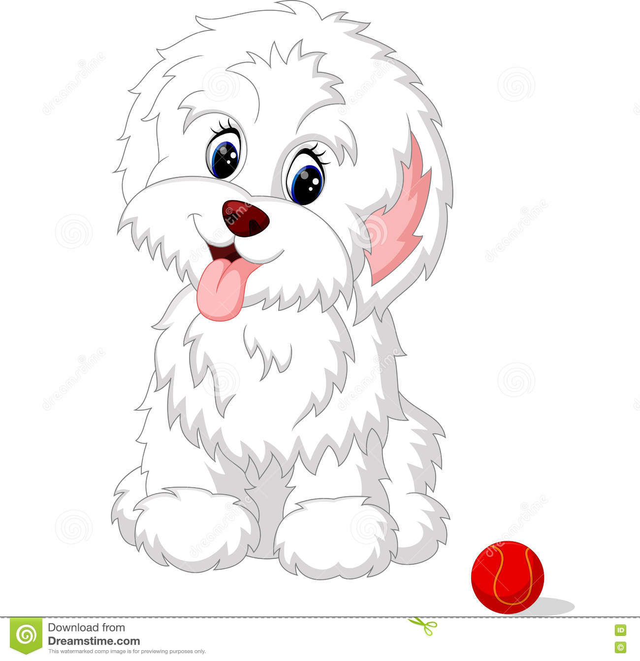 Cute white lap-dog puppy posing
