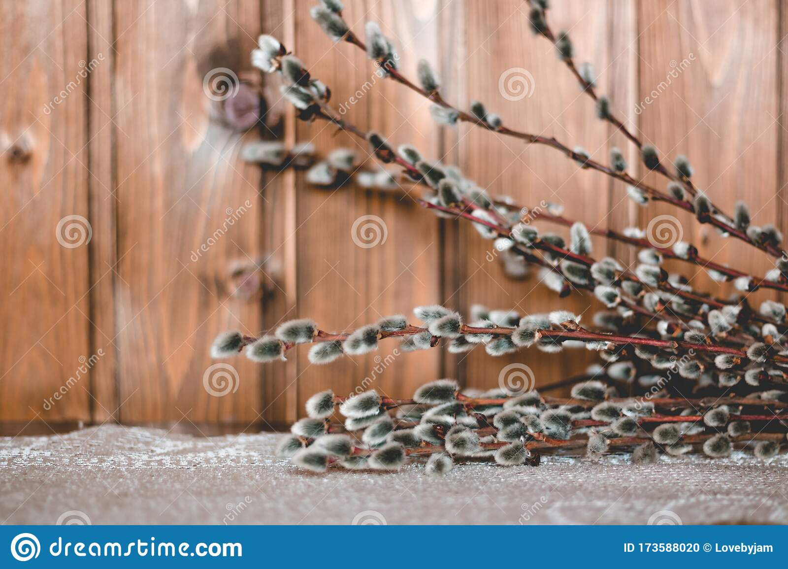 Cute Willow Branches On Wooden Table Flat Lay View Hello Spring Concept Tree Branch Close Up Stock Photo Image Of Decoration Nature 173588020