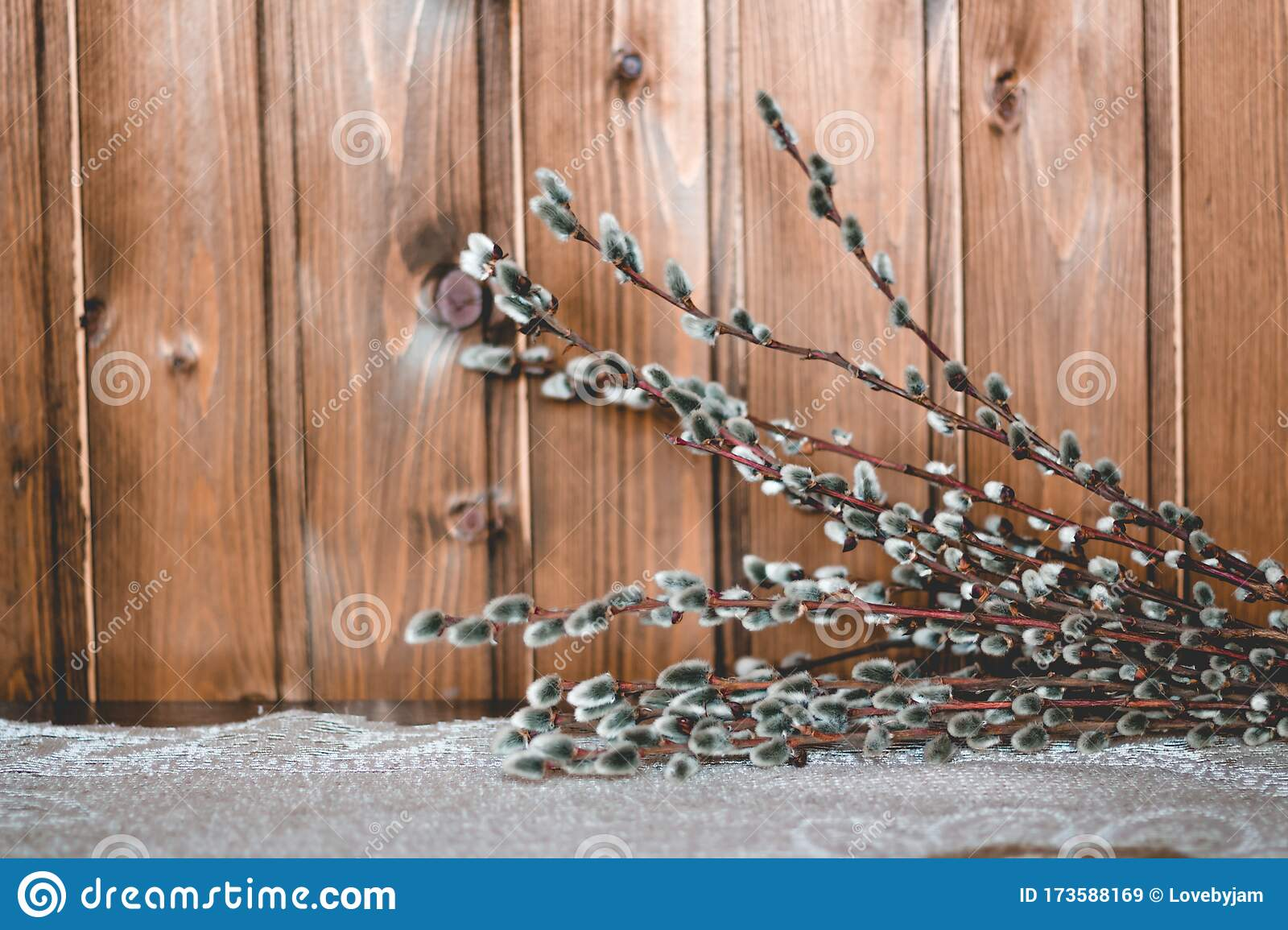 Cute Willow Branches On Wooden Table Flat Lay View Hello Spring Concept Tree Branch Close Up Stock Image Image Of Easter Branches 173588169