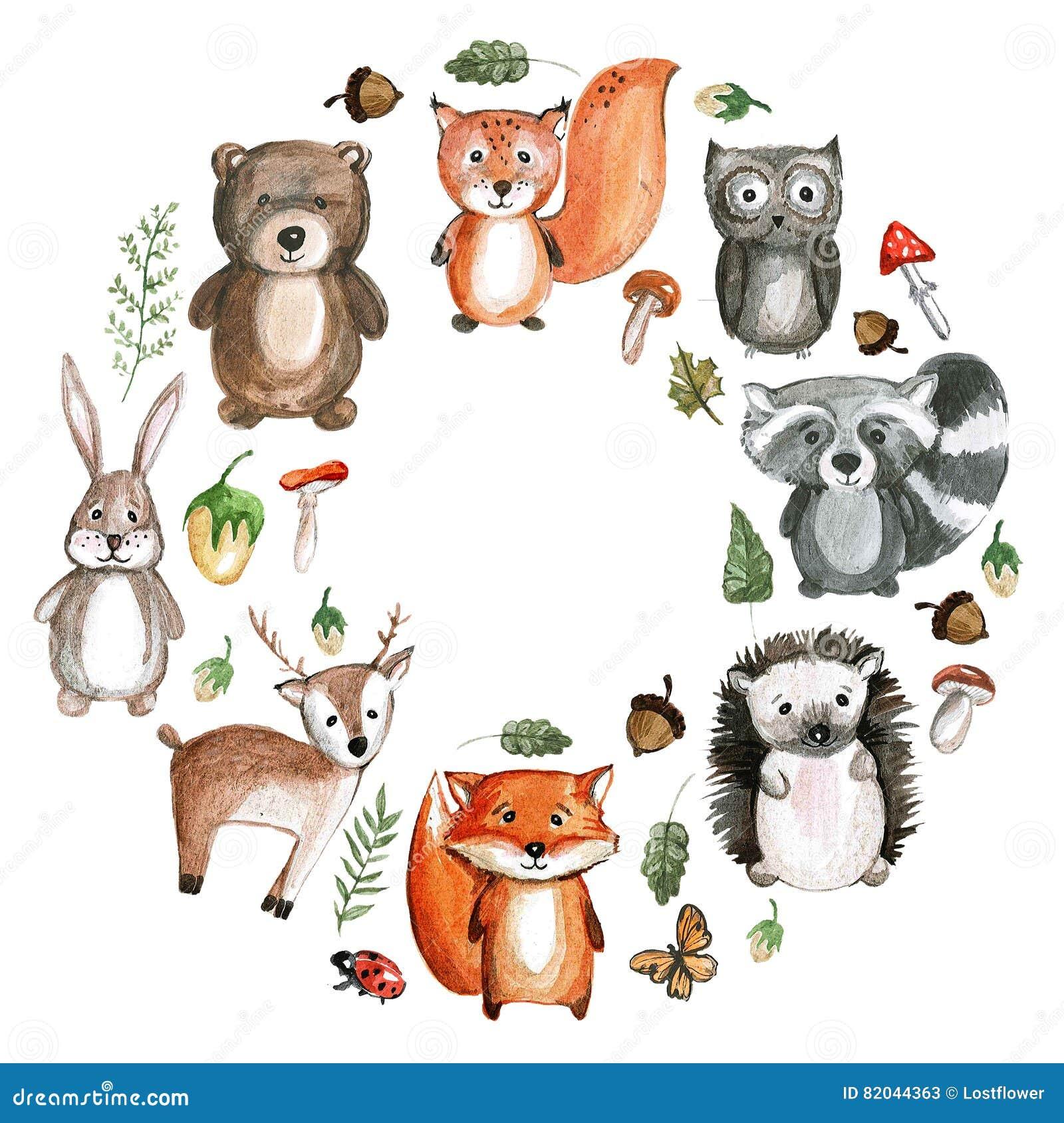 Cute Woodland Animals Watercolor Images Kindergarten Zoo
