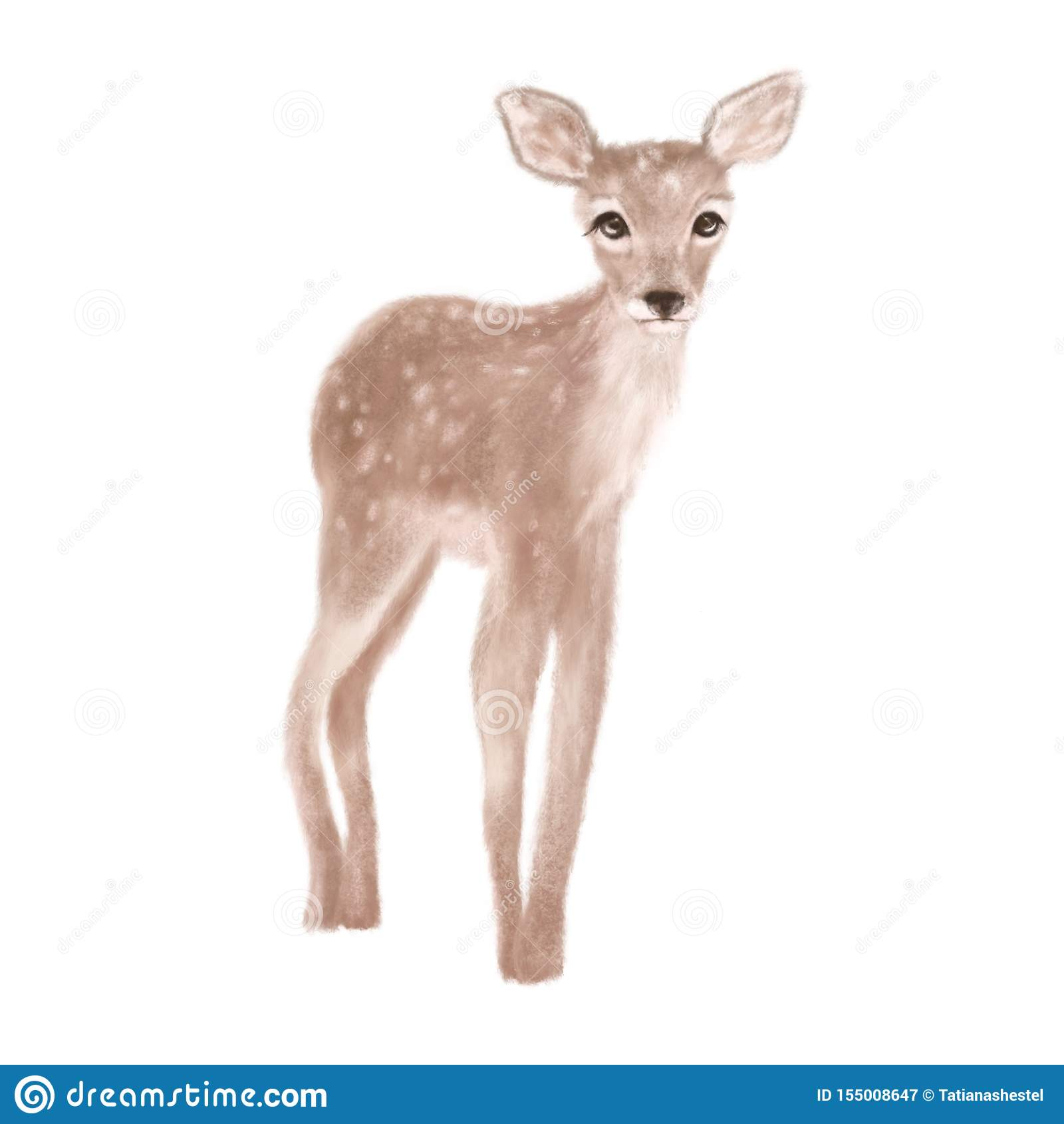 Cute Deer On White Background Isolated Stock Illustration Illustration Of Isolated Drawn 155008647