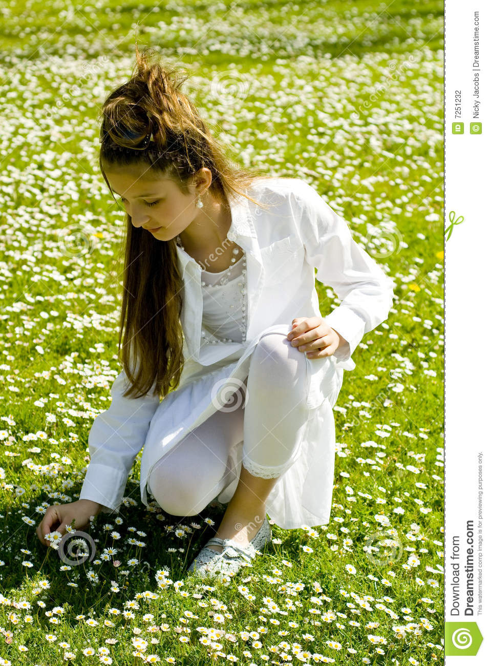 Cute Young Girl Picking Flowers Stock Photo Image 7251232