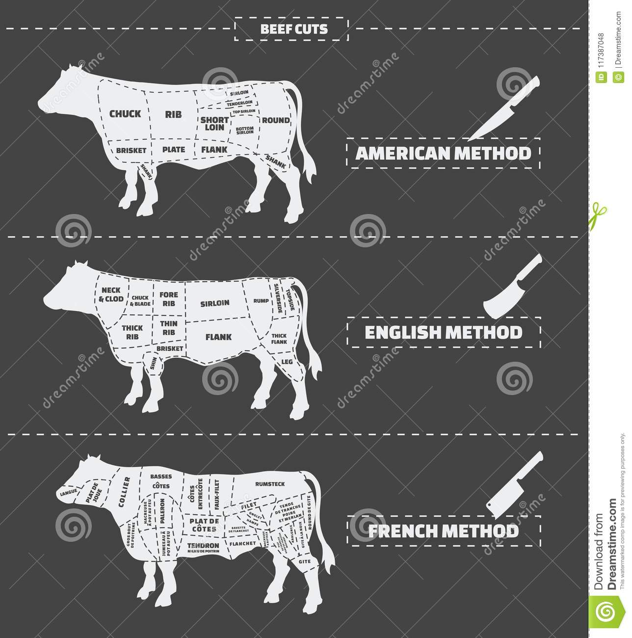Cuts Of Beef  American, English And French Method  Stock