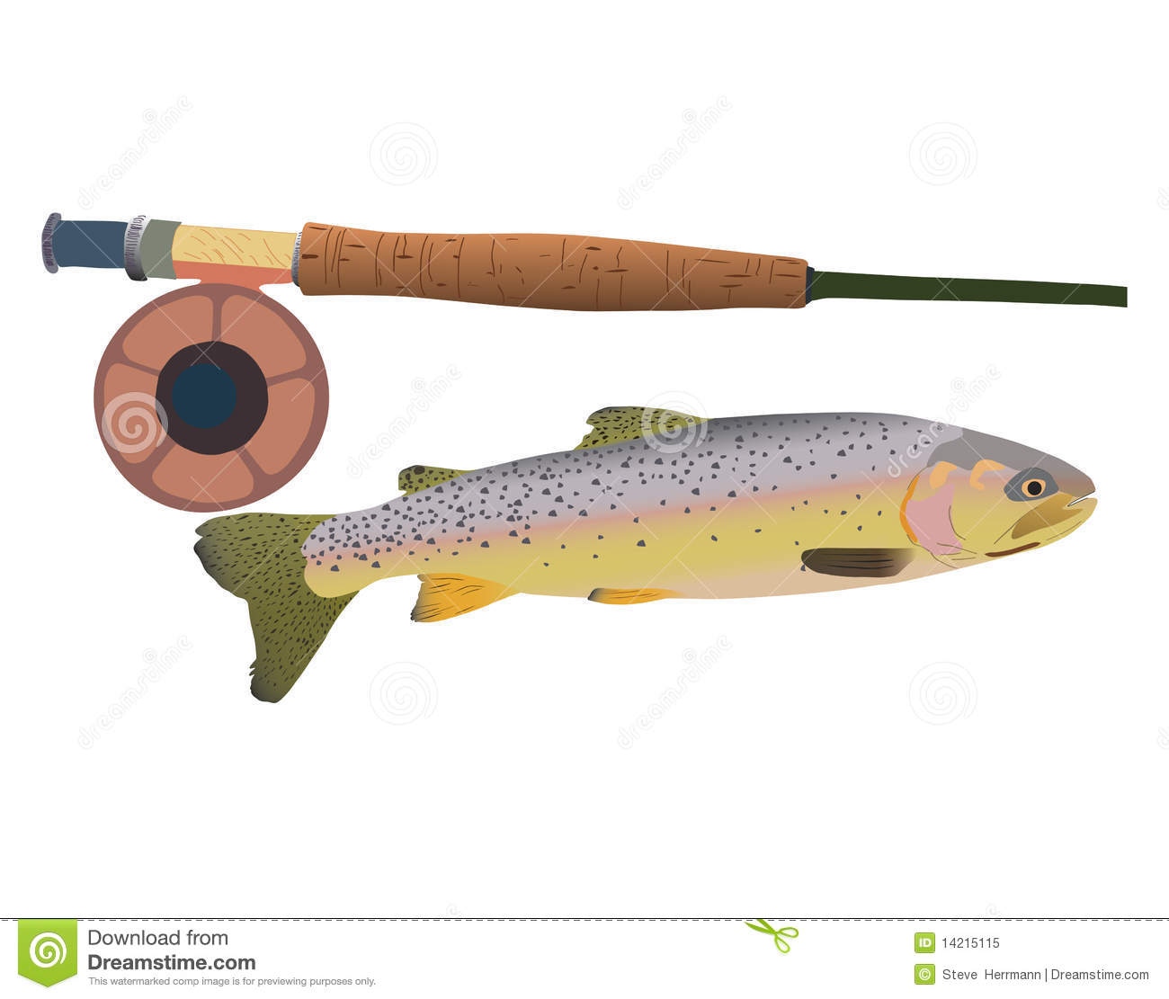 cutthroat trout with fly rod royalty free stock photo - image, Fly Fishing Bait