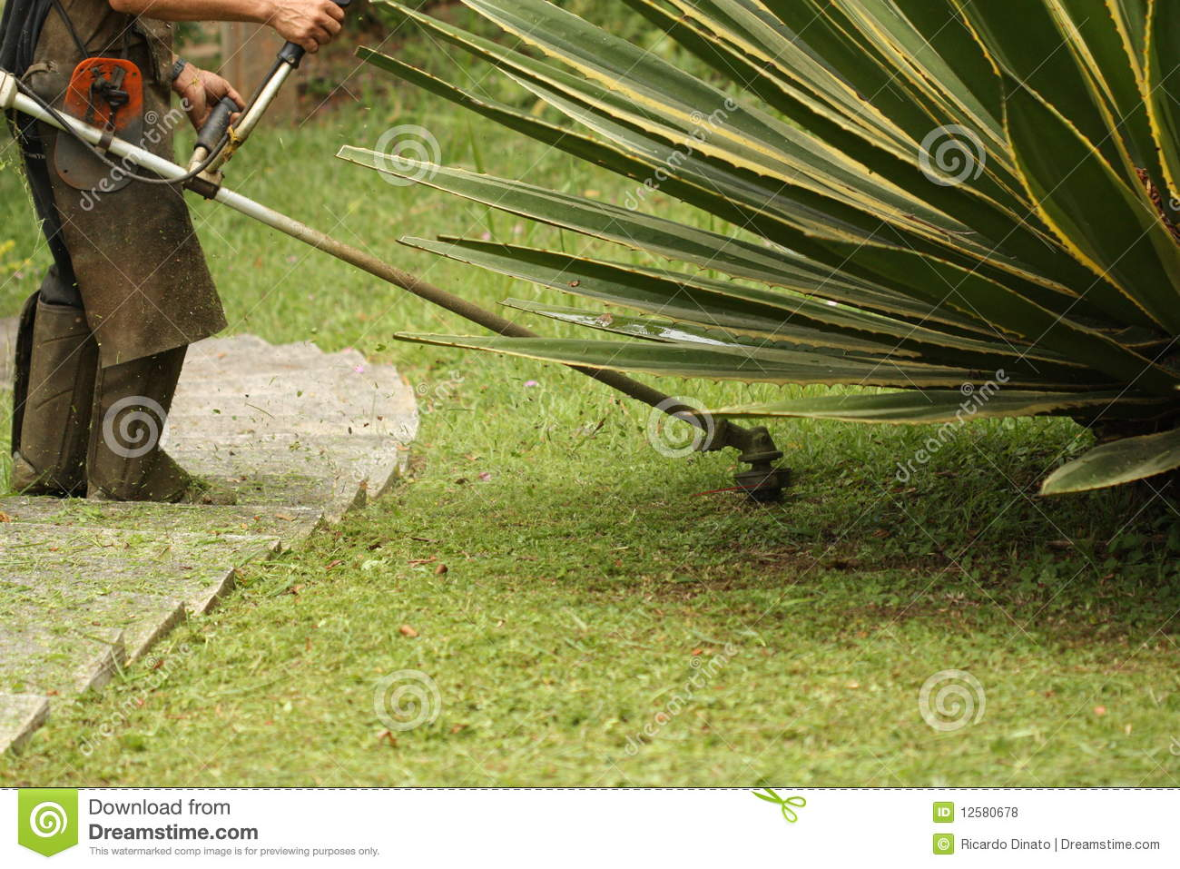 Cutting Grass Royalty Free Stock Photos - Image: 12580678