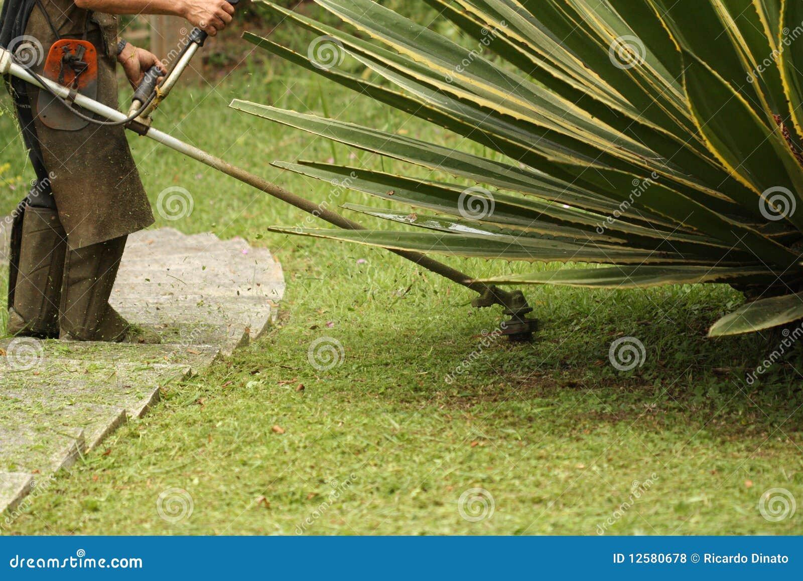 Cutting Grass Royalty Free Stock Photos - Image: 12580678