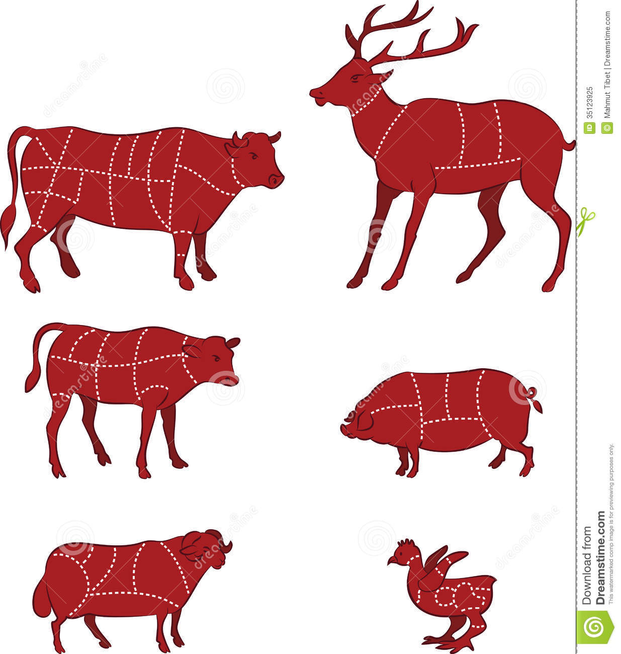Cutting    meat    diagram    stock vector Illustration of fowl