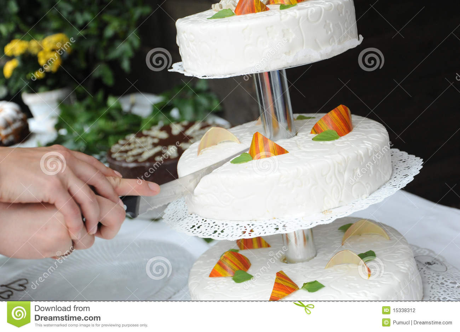 Cutting The Wedding Cake Stock Photography