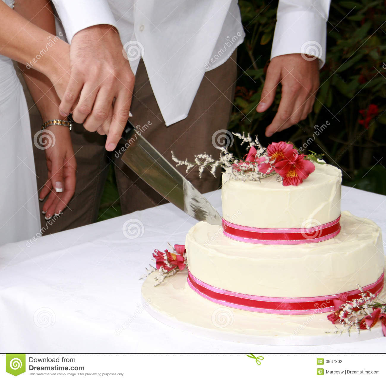 cutting a wedding cake cutting the wedding cake stock photography image 3967802 13284