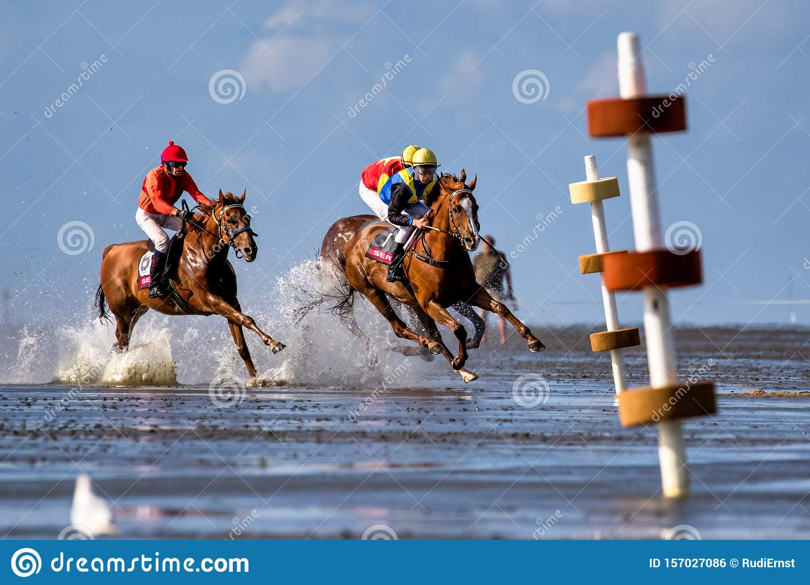 Cuxhaven, Germany - July 22, 2018: equestrian at the horse race in the mud flat at Duhner Wattrennen