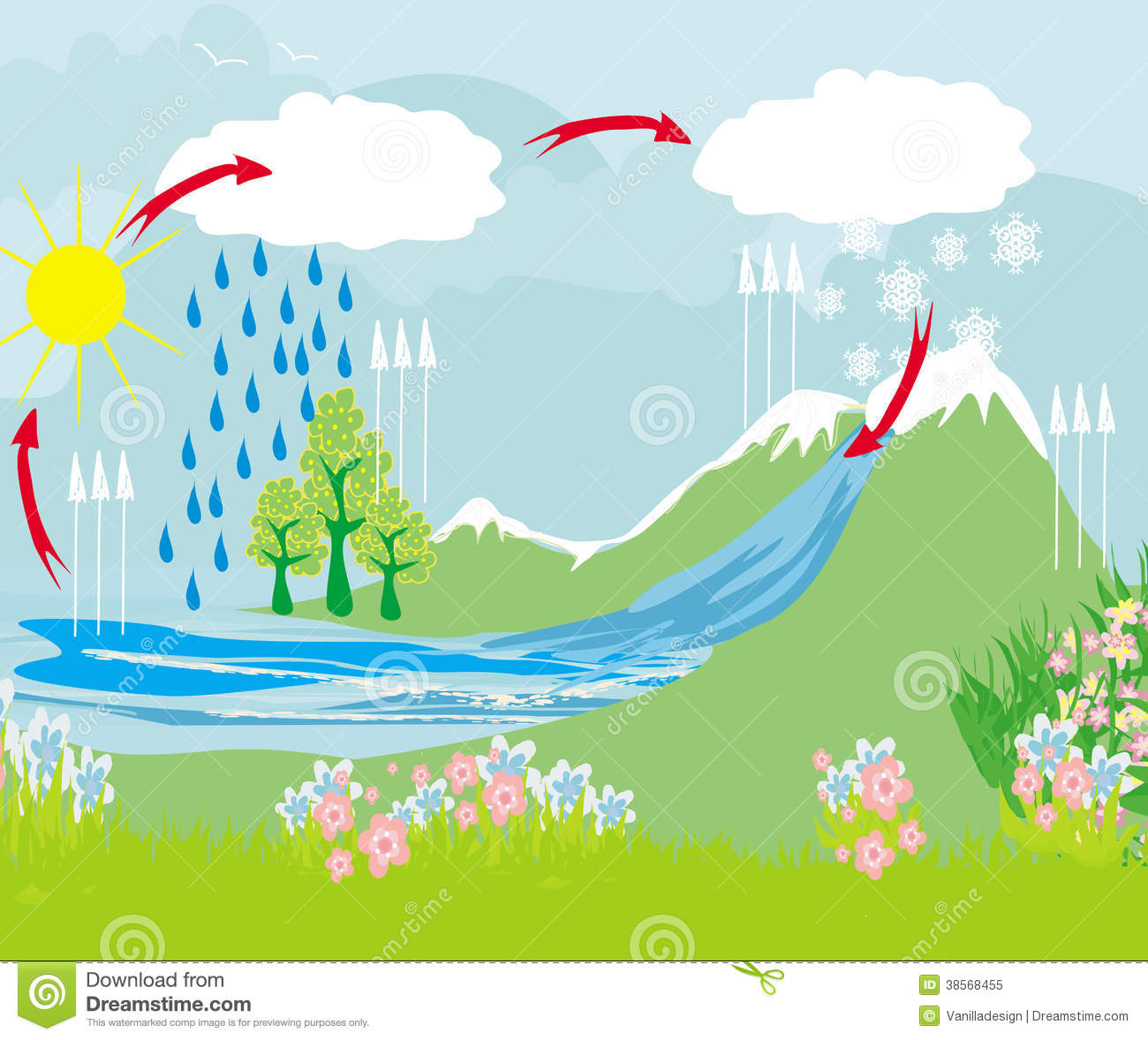 Cycle Water In Nature Environment Stock Vector ...