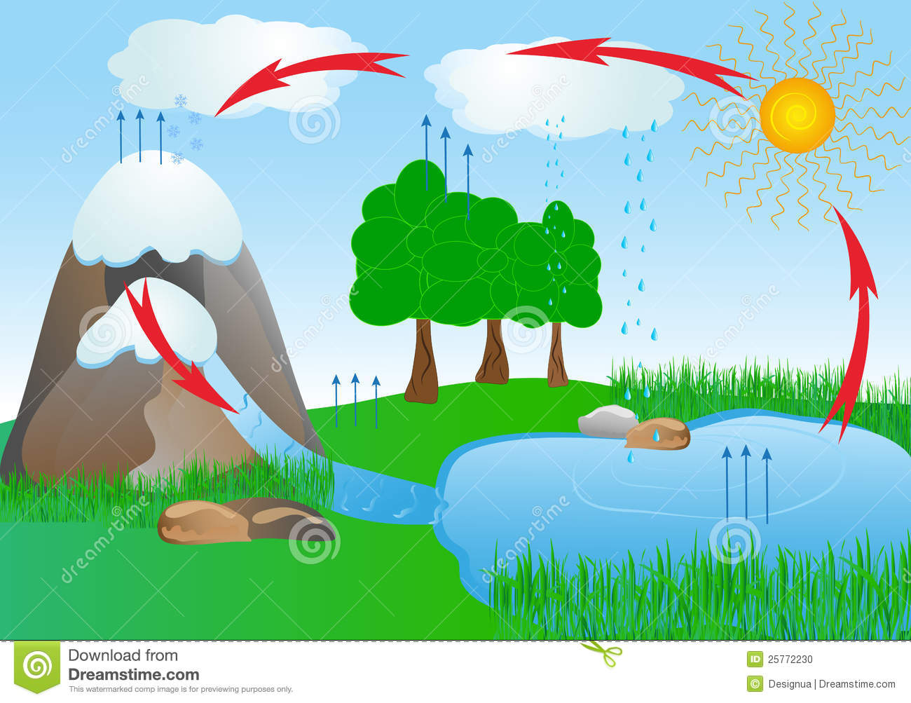 Cycle Water In Nature Environment. Oxygen Stock Vector ...