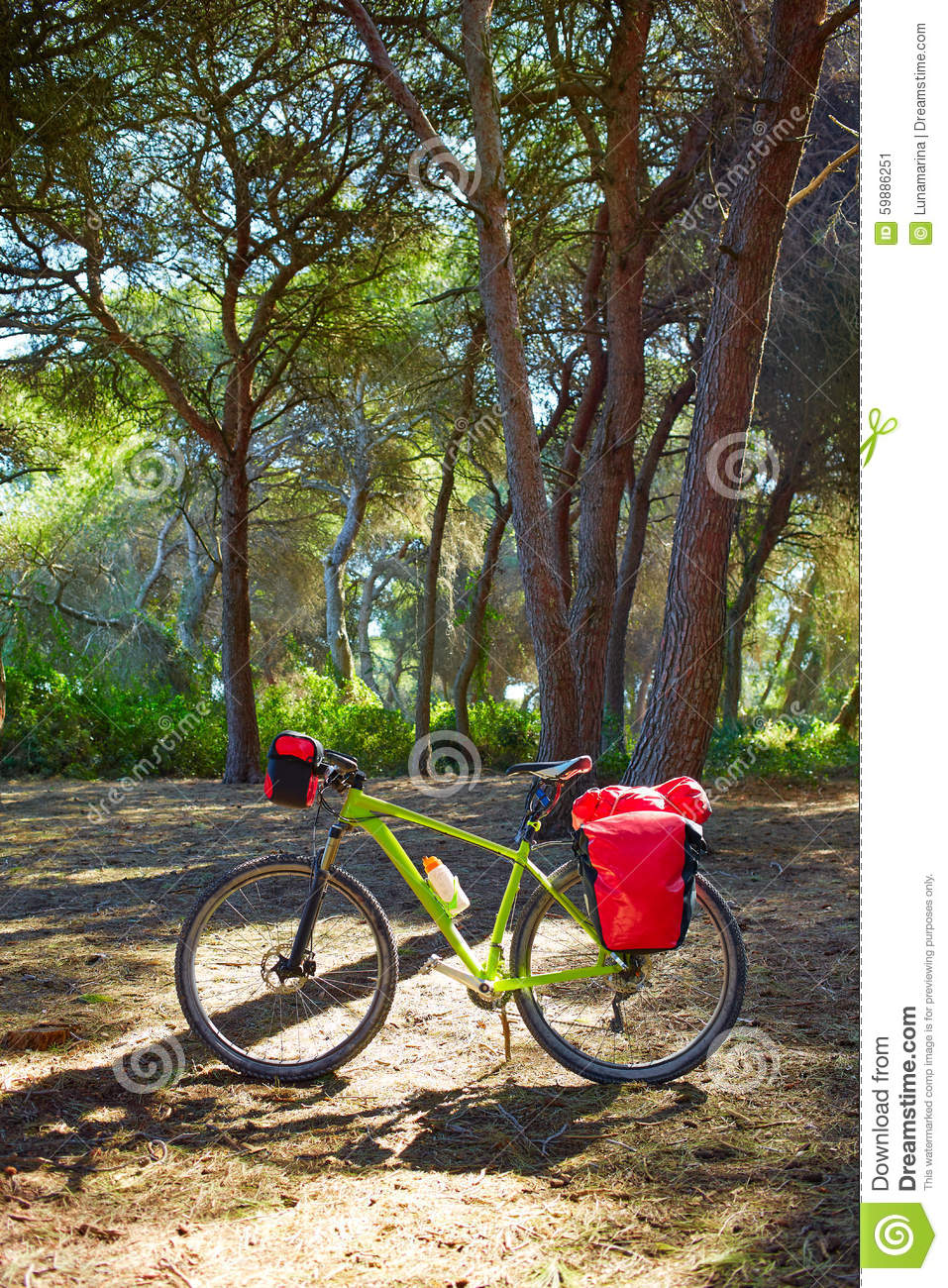 Cycling tourism bike in Spain with paniers