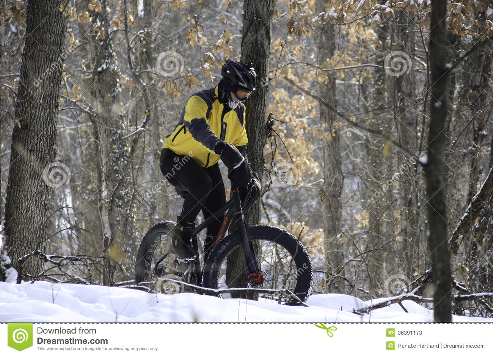 Cycliste dans la forêt neigeuse