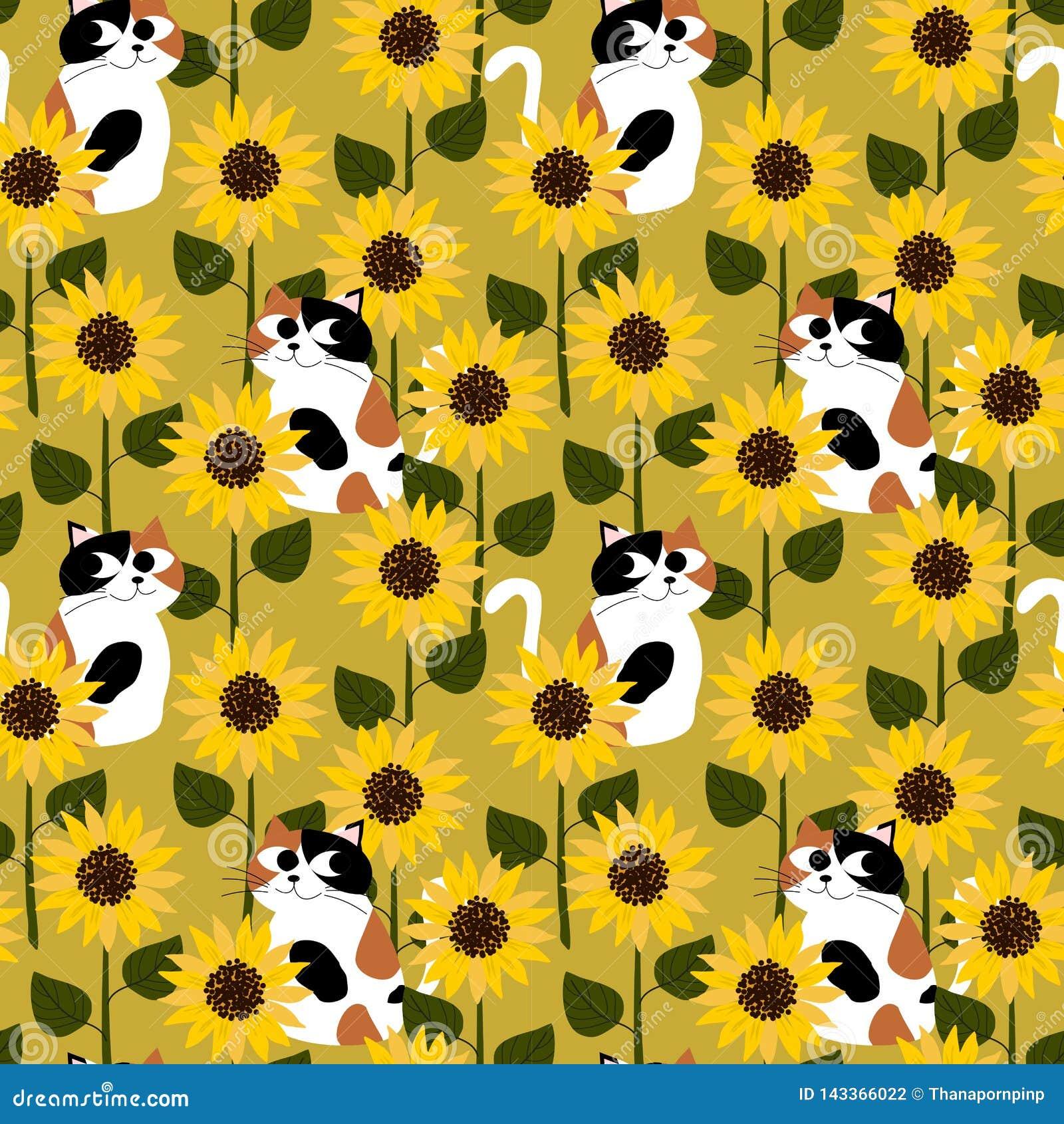 Cycowy kot w słonecznika pola bezszwowym wzorze