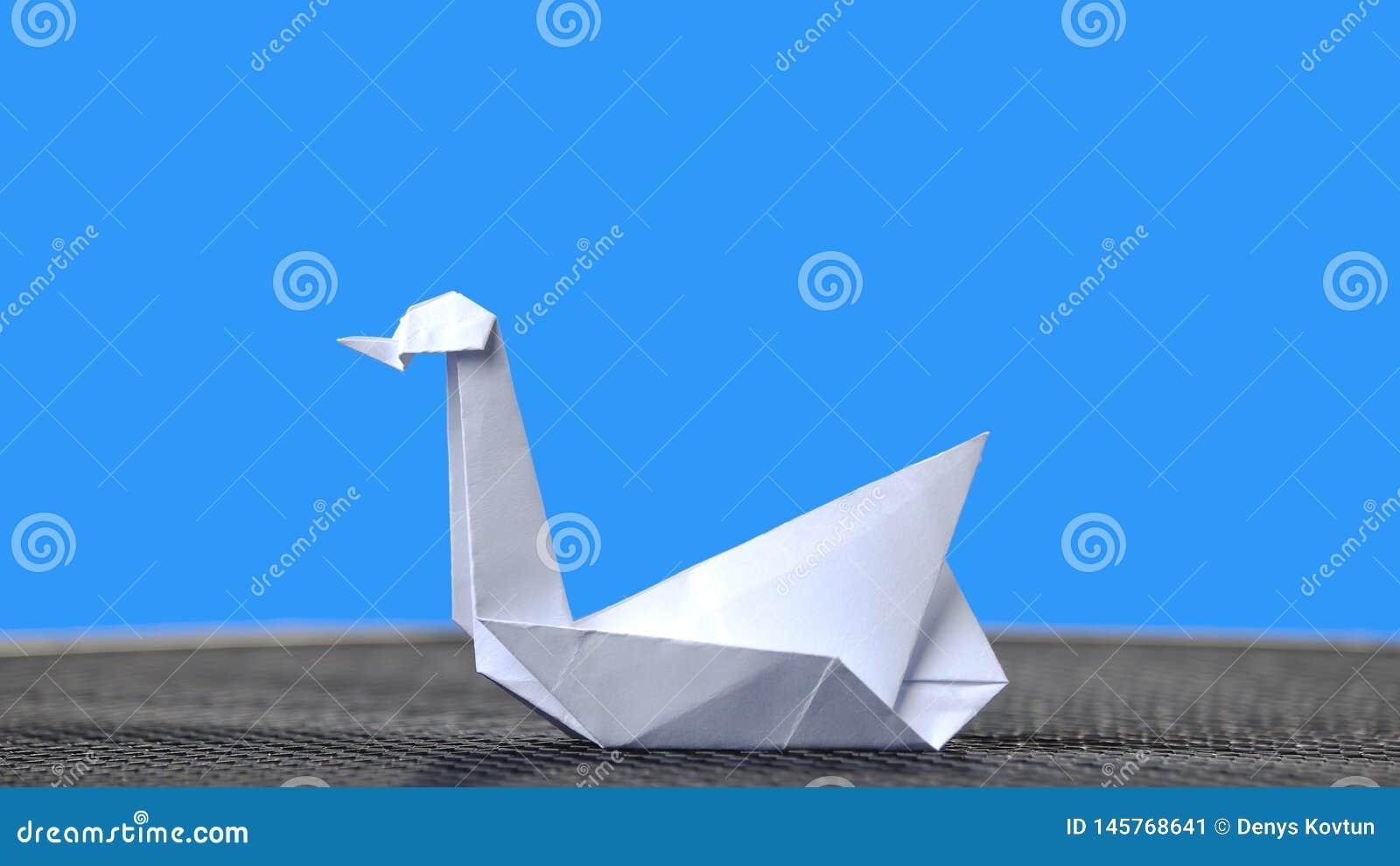 Cygne blanc d origami sur le fond bleu