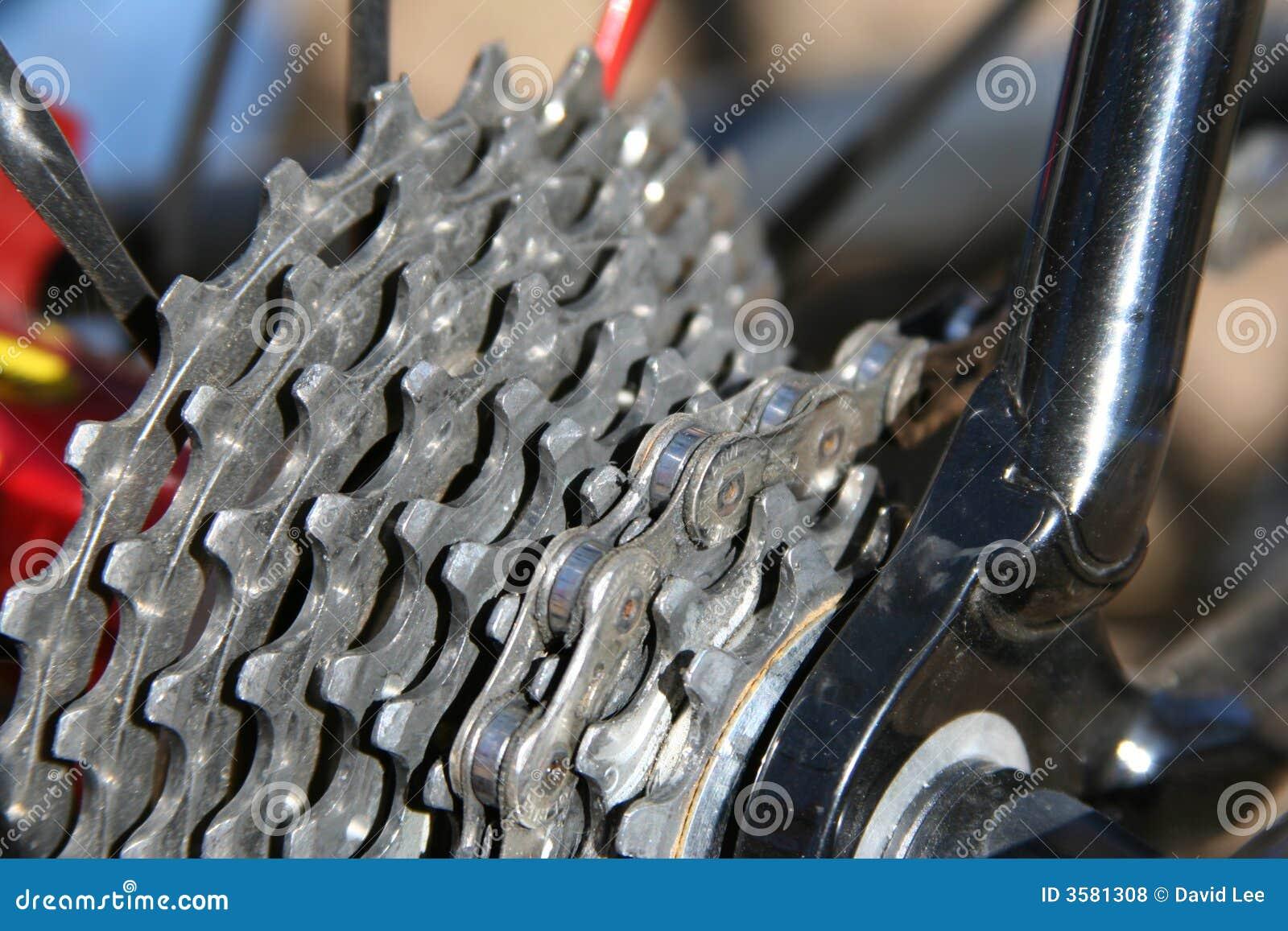 Cykeln gears tandhjul