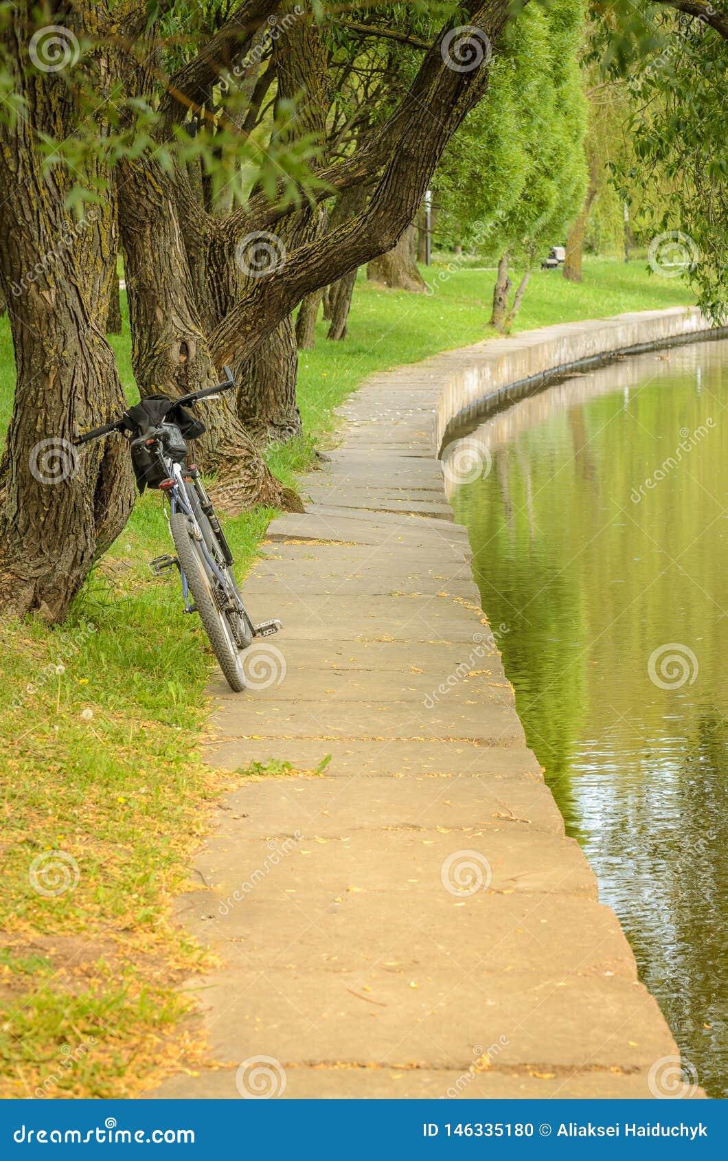 Cykeln n?ra floden in parkerar/cykeln parkerar in n?ra en beh?llare