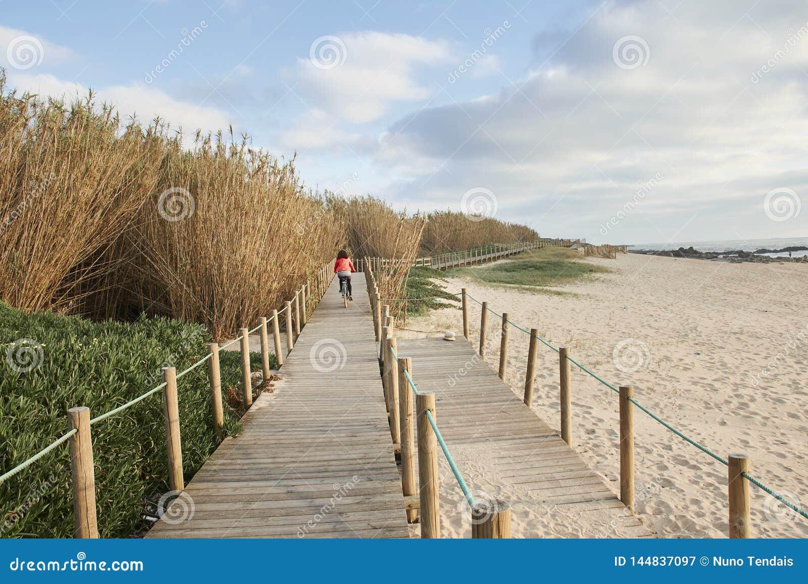 Cykelritt på strandgångbanan