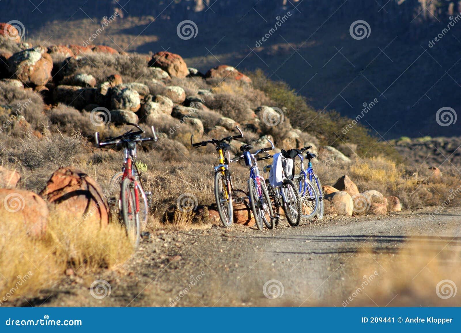 Cyklar berg