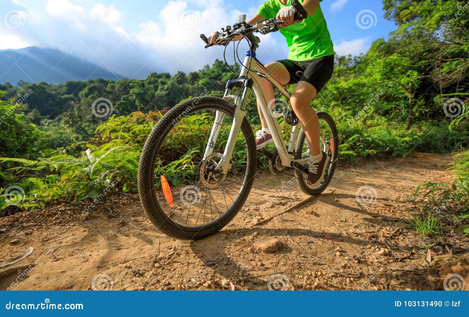 Cyklisty kolarstwo na lasowym śladzie