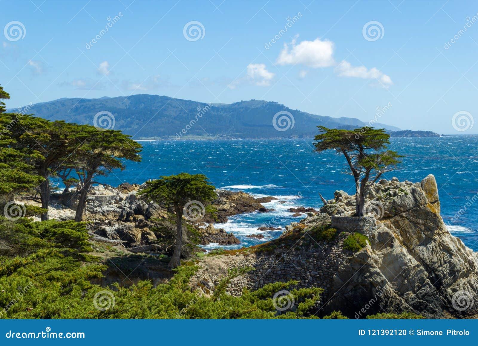 Cypress, Carmen e Monterey sós, Califórnia, EUA