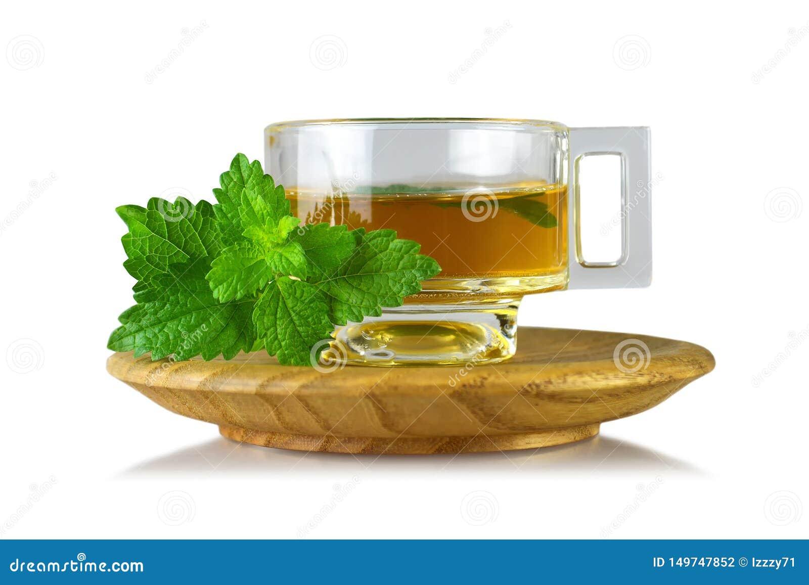 Cytryna balsamu Melissa herbata w filiżance odizolowywającej na białym tle