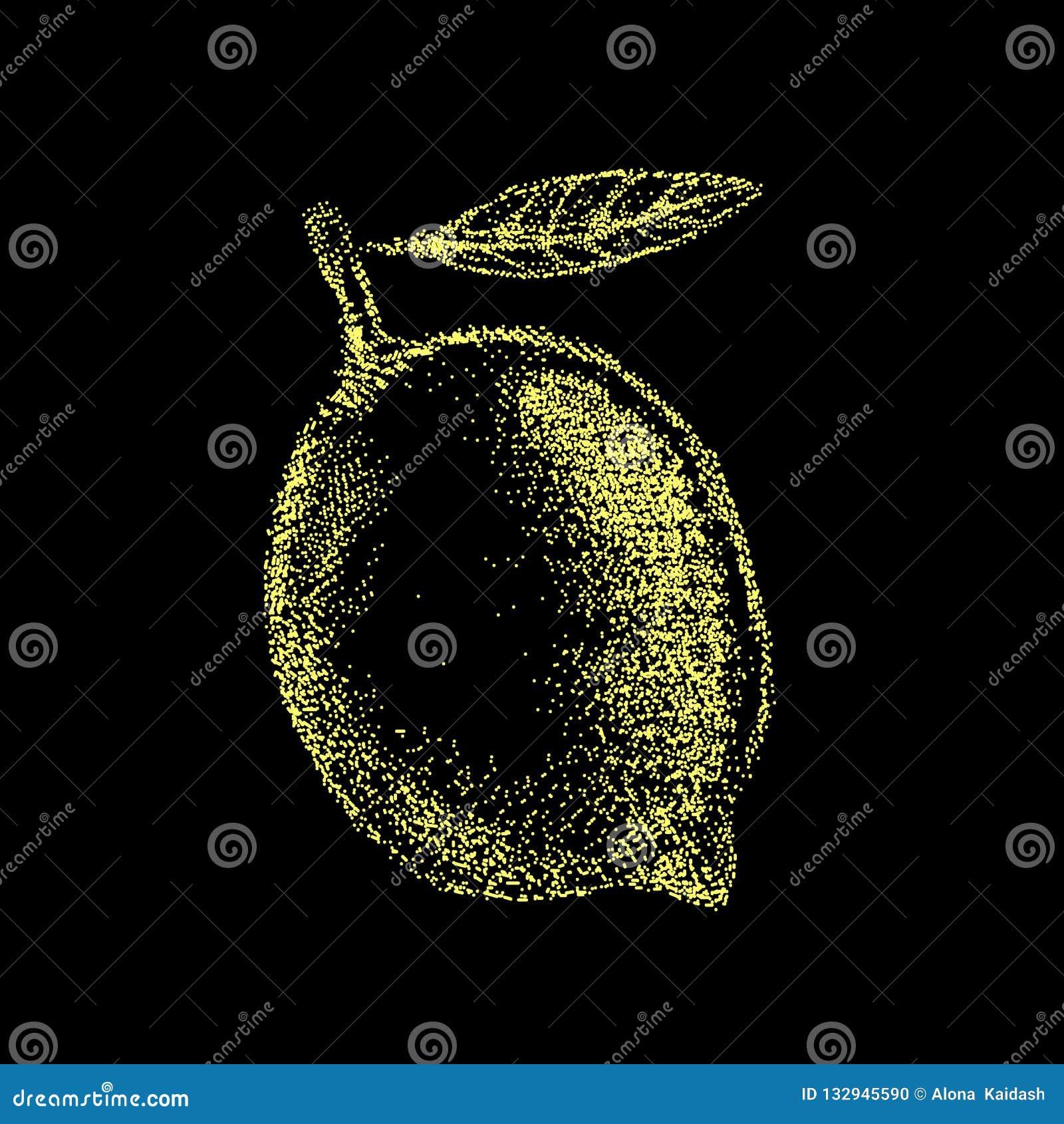 Cytryna rocznika projekta owocowy szablon Botaniczne owoc