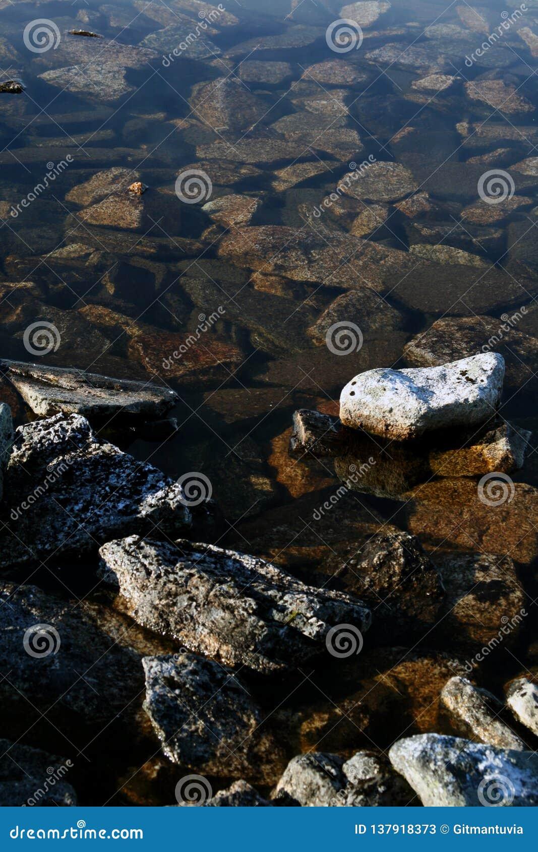 Częsciowo zanurzający otoczaki znakomici w strumieniu przy Lapland Finlandia