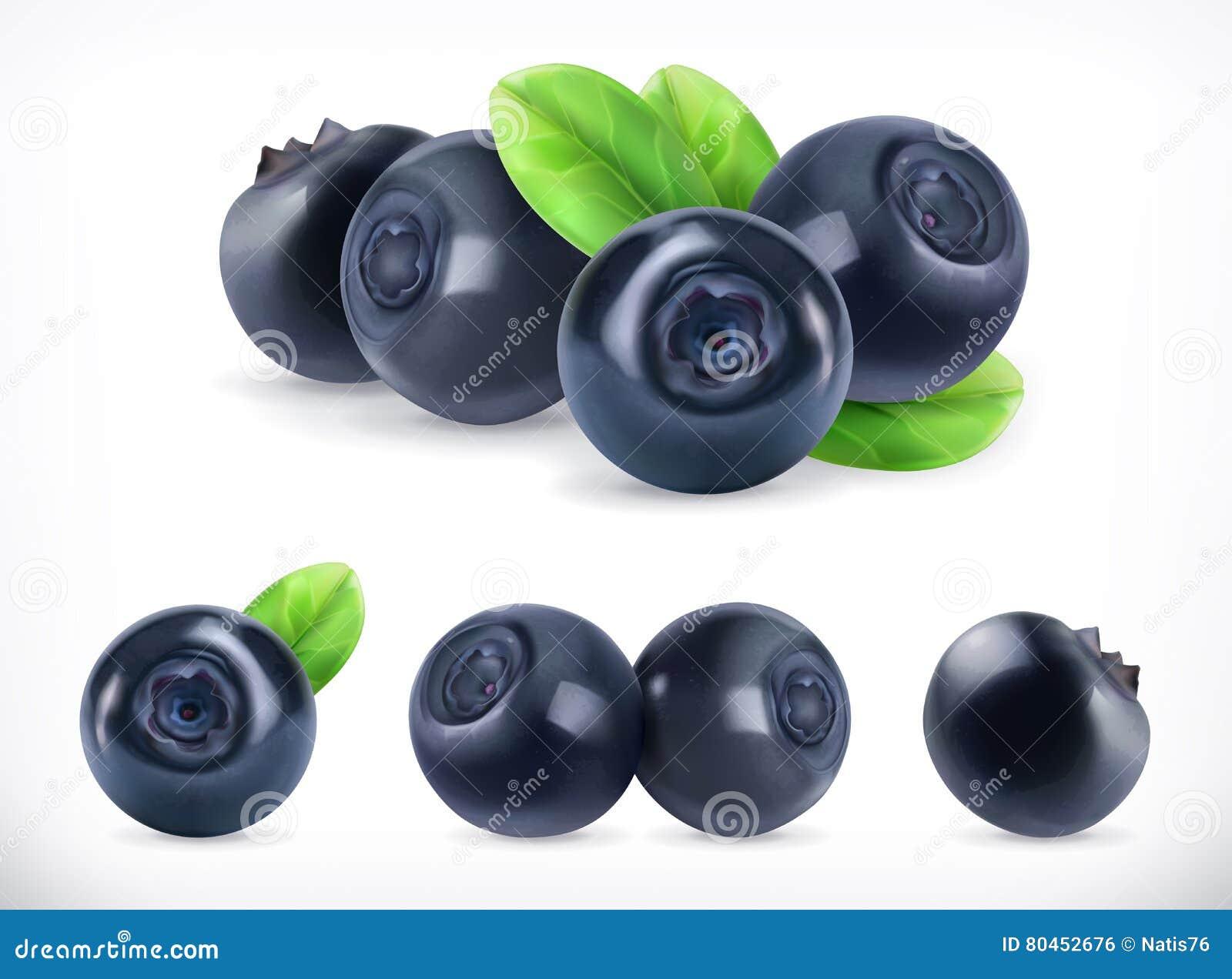 Czarna jagoda Lasowa jagoda 3d wektorowe ikony ustawiać realistyczna ballons ilustracja