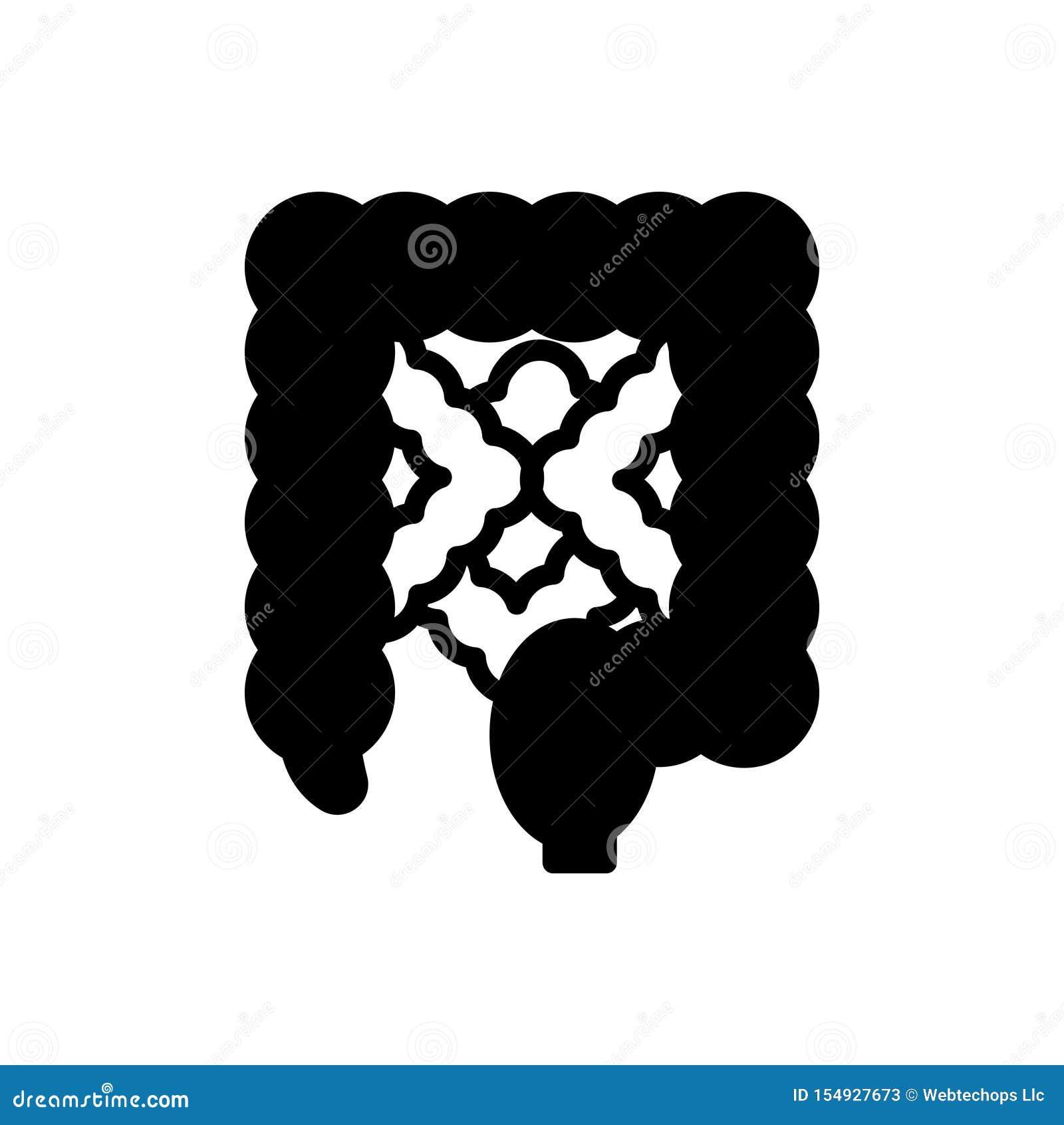 Czarna stała ikona dla jelita, pokarmowy i trawienny