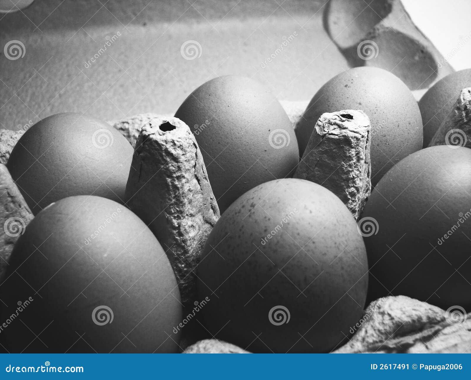Czarne jaja białe