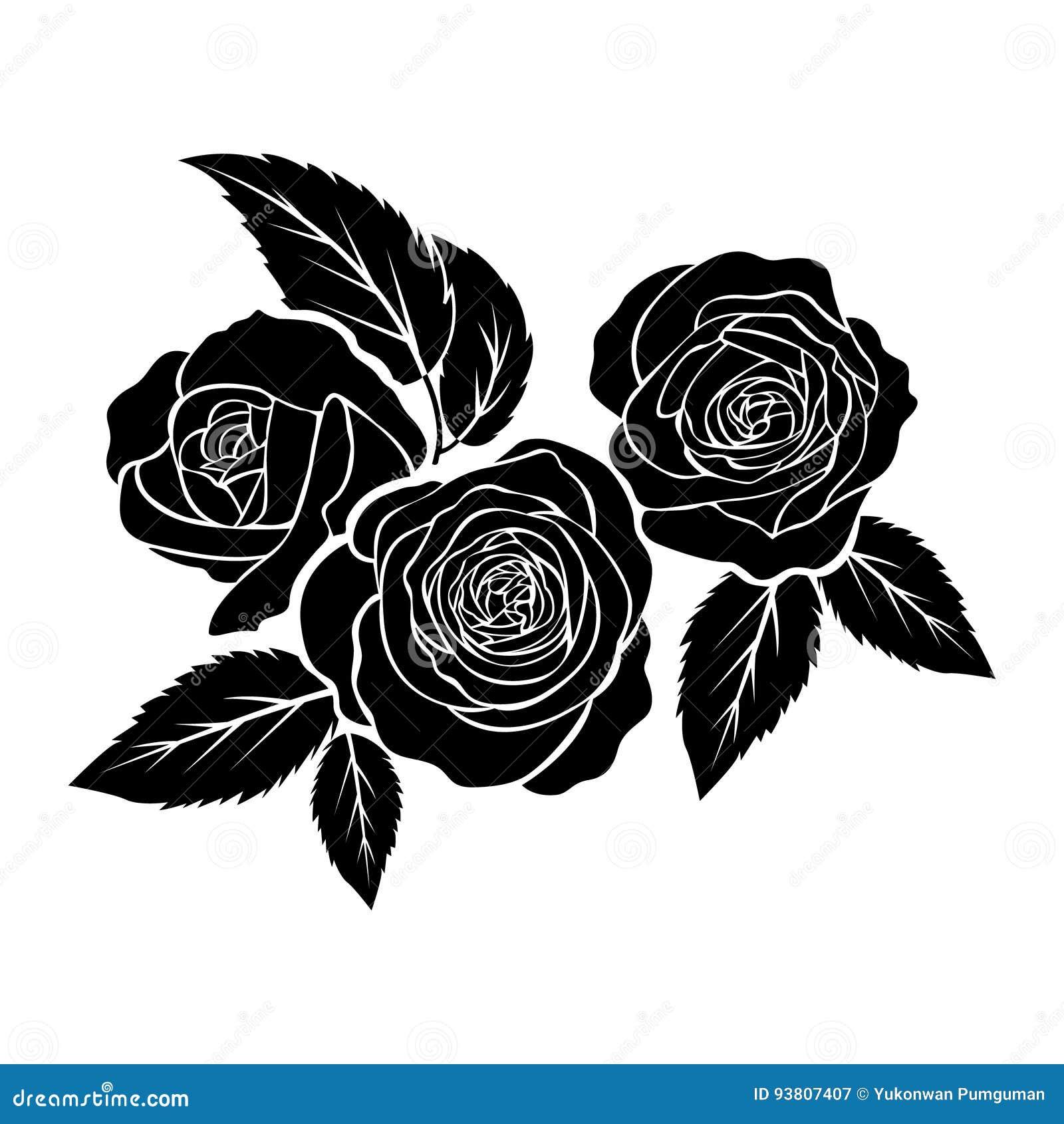 Czarne Róże Ilustracje Tatuaż Na Białym Tle Wektor