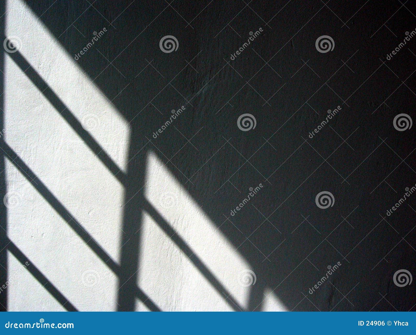 Czarny cień białej