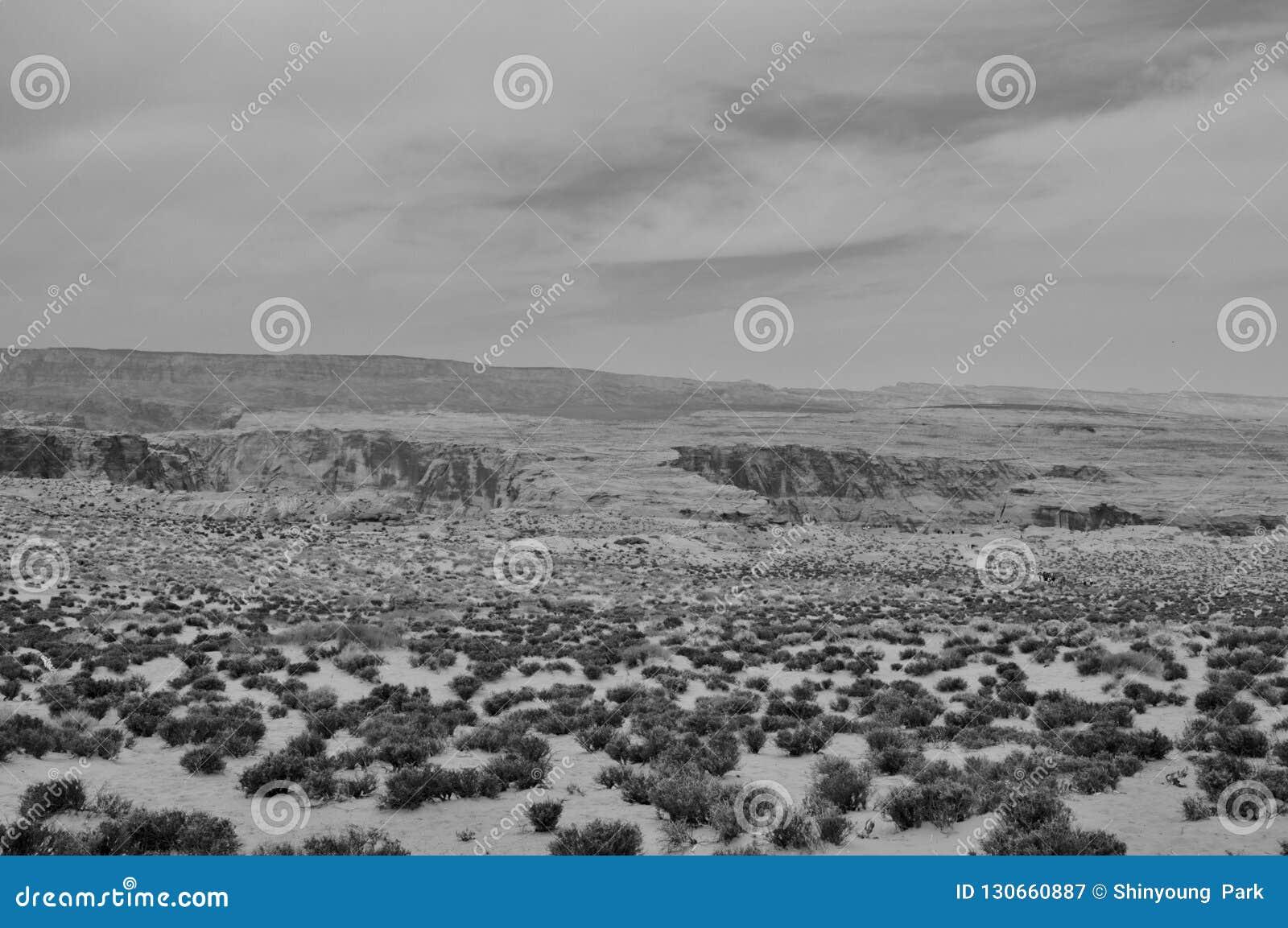 Czarny I Biały pustynia bez żadny żyje