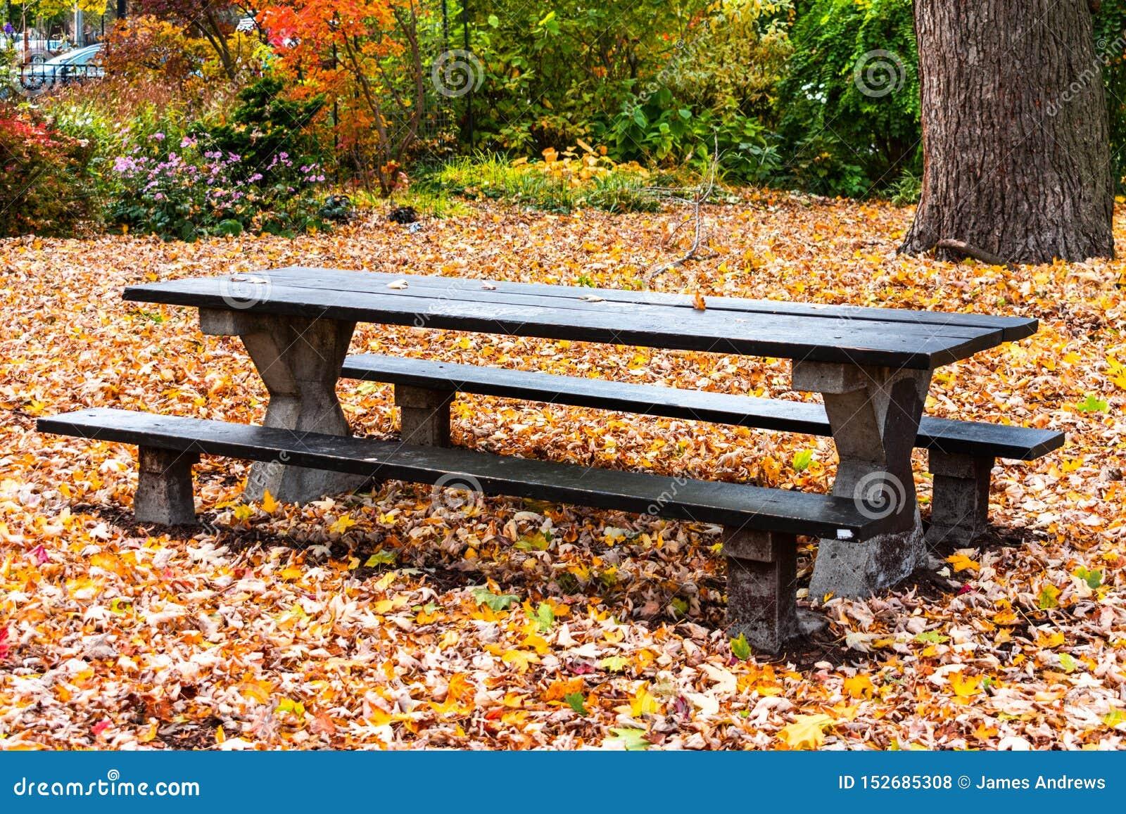 Czarny Pykniczny stół w parku podczas jesieni otaczającej Spadać liśćmi
