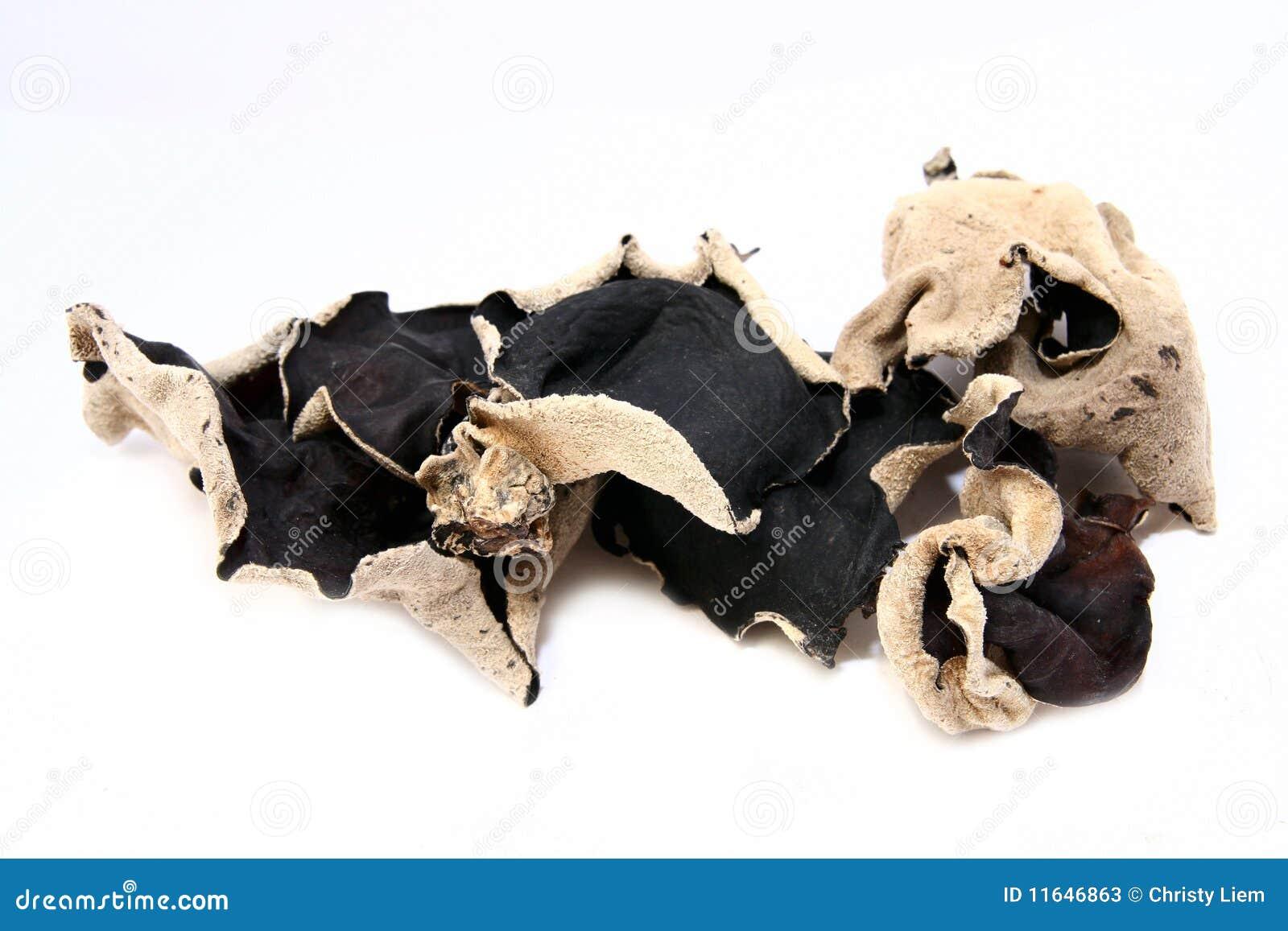 Czarny sucha pieczarka