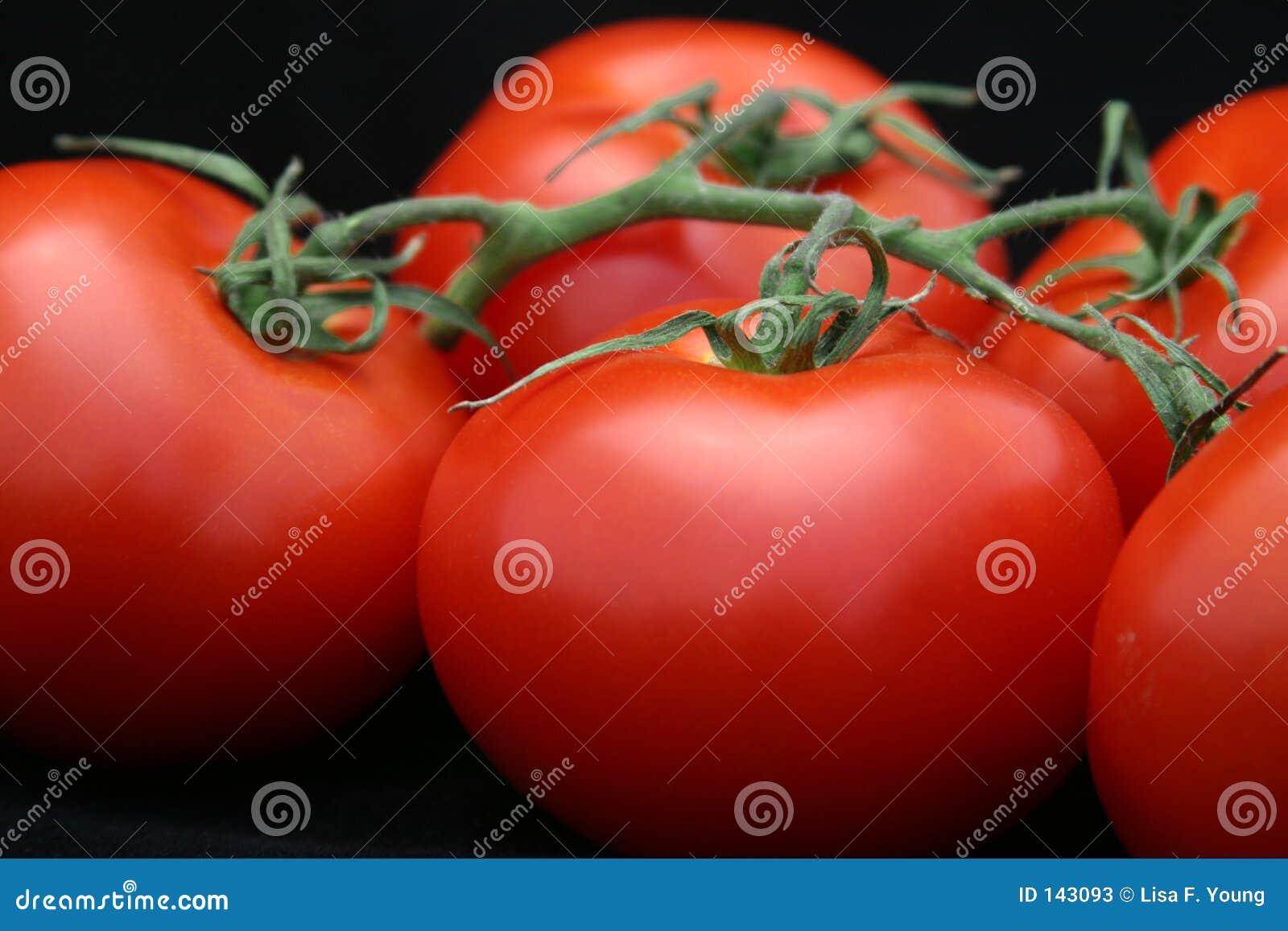 Czarny zbliżenie czerwonym pomidora