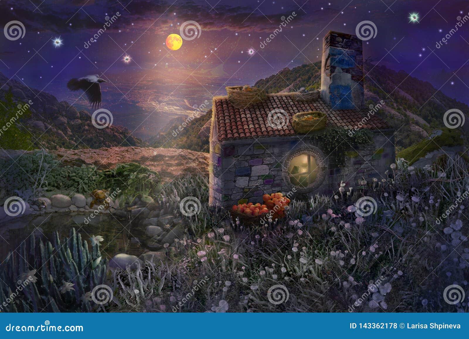 Czarodziejka kamienia dom z gniazdeczkami na dachu i staw z żabami w magicznym lesie gwiaździsta noc z jaskrawą księżyc w niebie