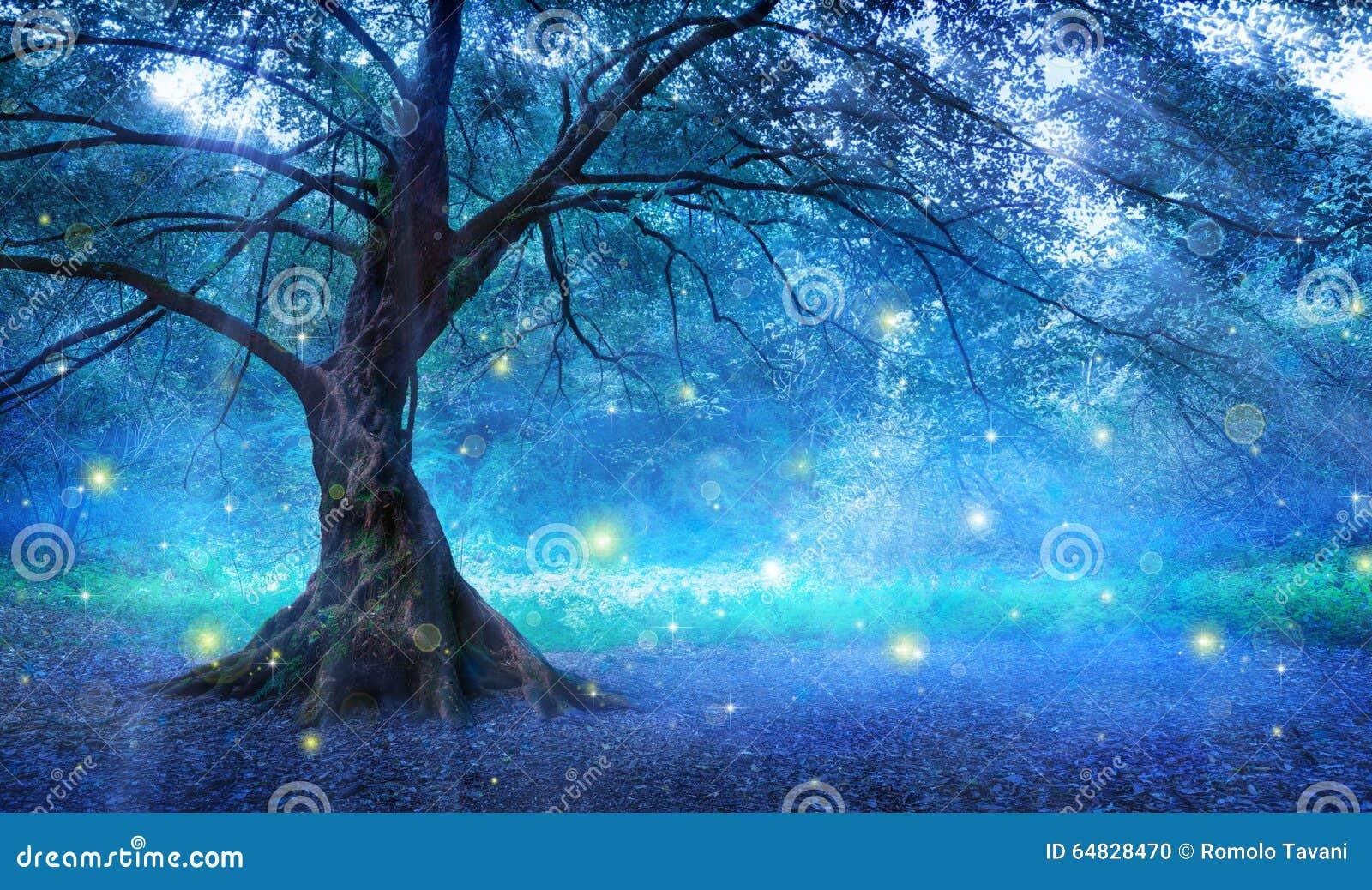 Czarodziejski drzewo