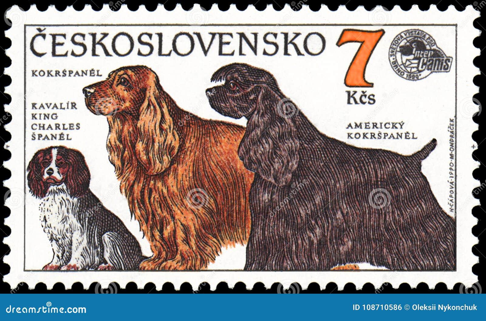 CZECHOSLOVAKIA - OKOŁO 1990: stempluje, drukował w Czechoslovakia, pokazuje psy, Nonszalancki królewiątka Charles spaniel, Cocker