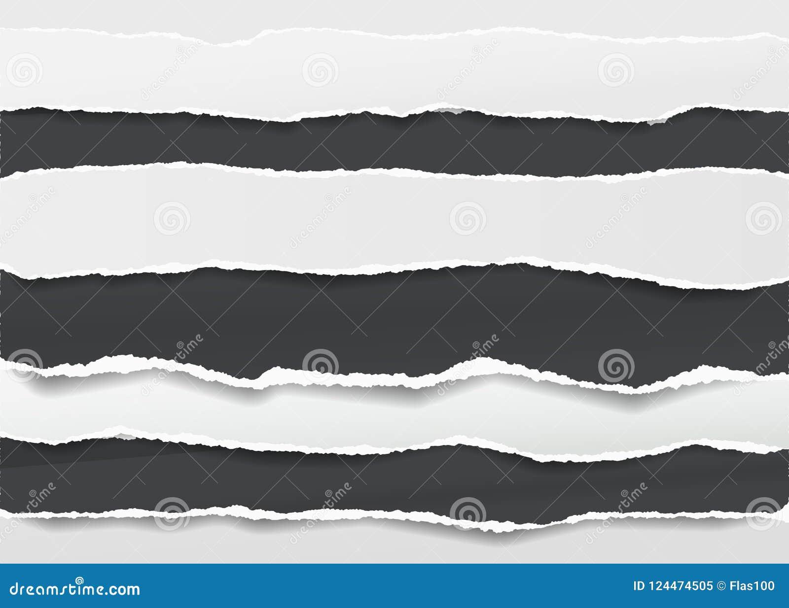 Czerń, biel rozdzierał pustych horyzontalnych nutowych papierowych paski dla teksta lub wiadomości wtykających na ciemnym tle