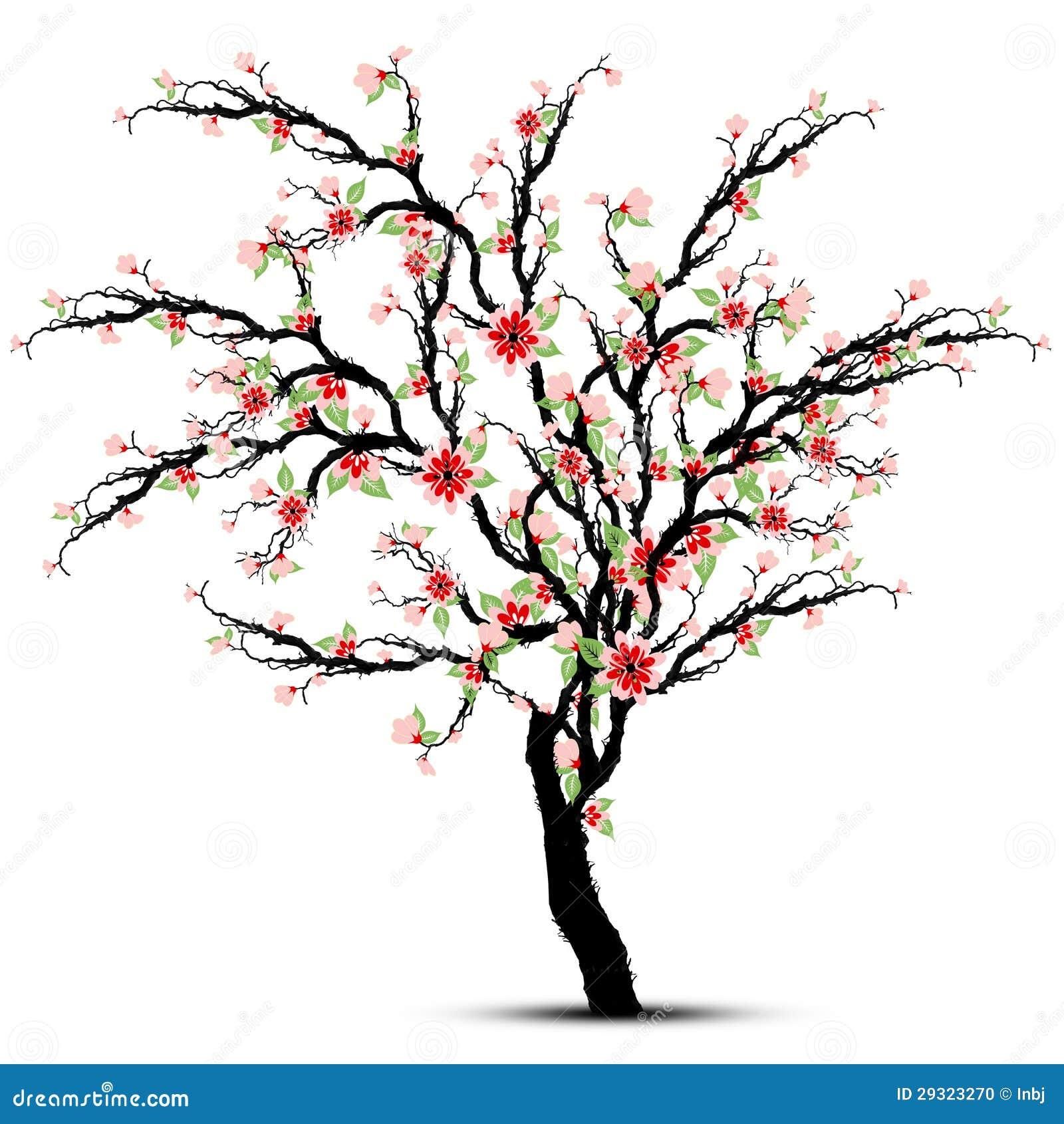 Czereśniowi okwitnięcia Drzewni