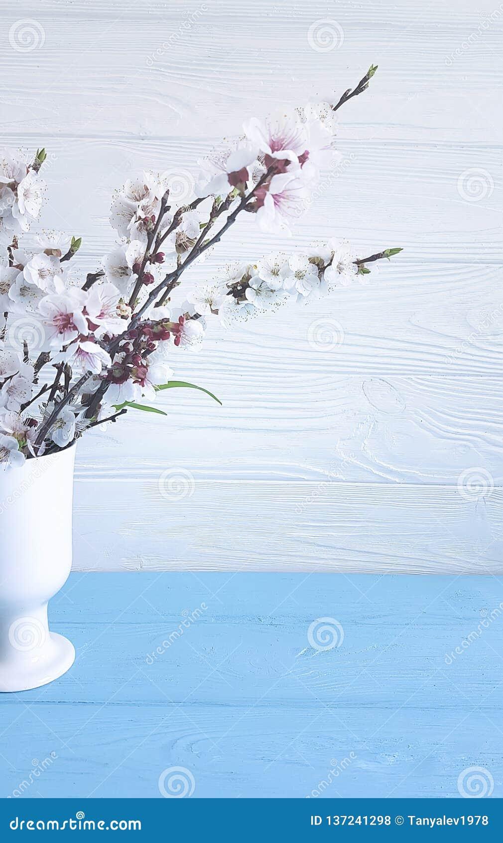 Czereśniowych okwitnięć świeżość wazowa dekoracji wiosna na drewnianym tle