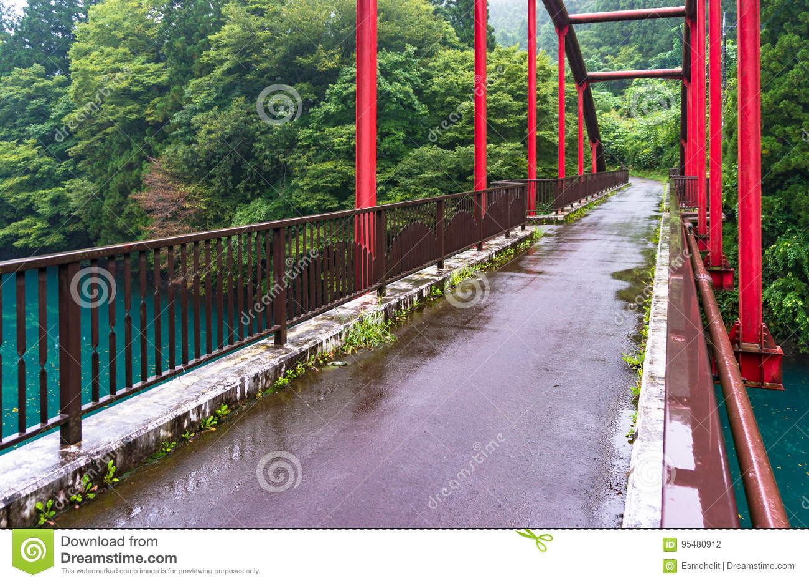 Czerwona bridżowej budowy rama przeciw lasowemu tłu